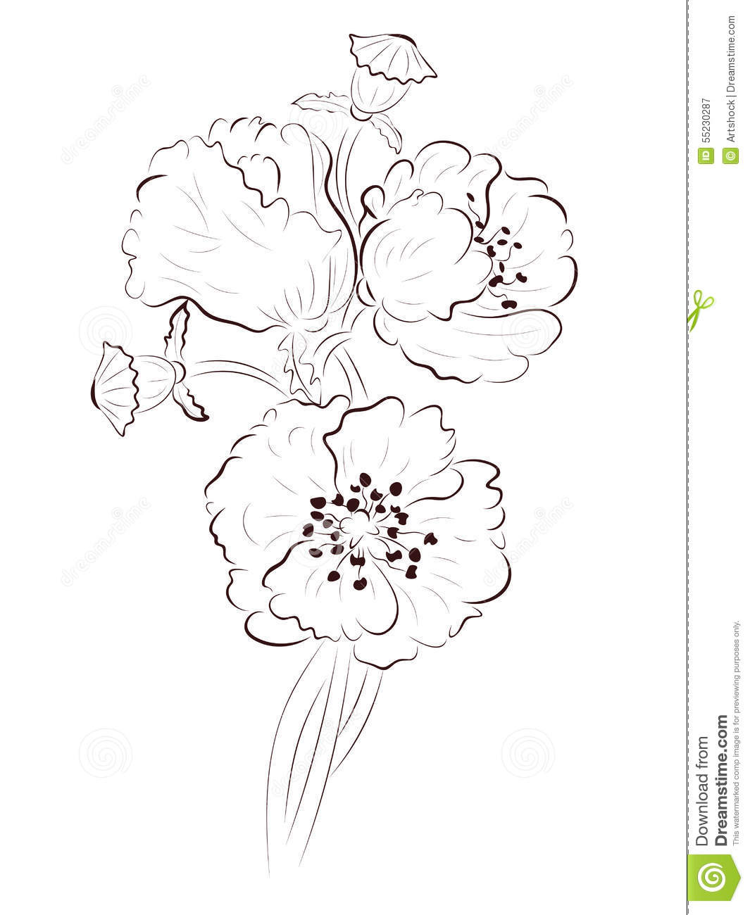 Poppy lineart stock vector illustration of announcement 55230287 hand drawing poppy flower simple line art illustration mightylinksfo