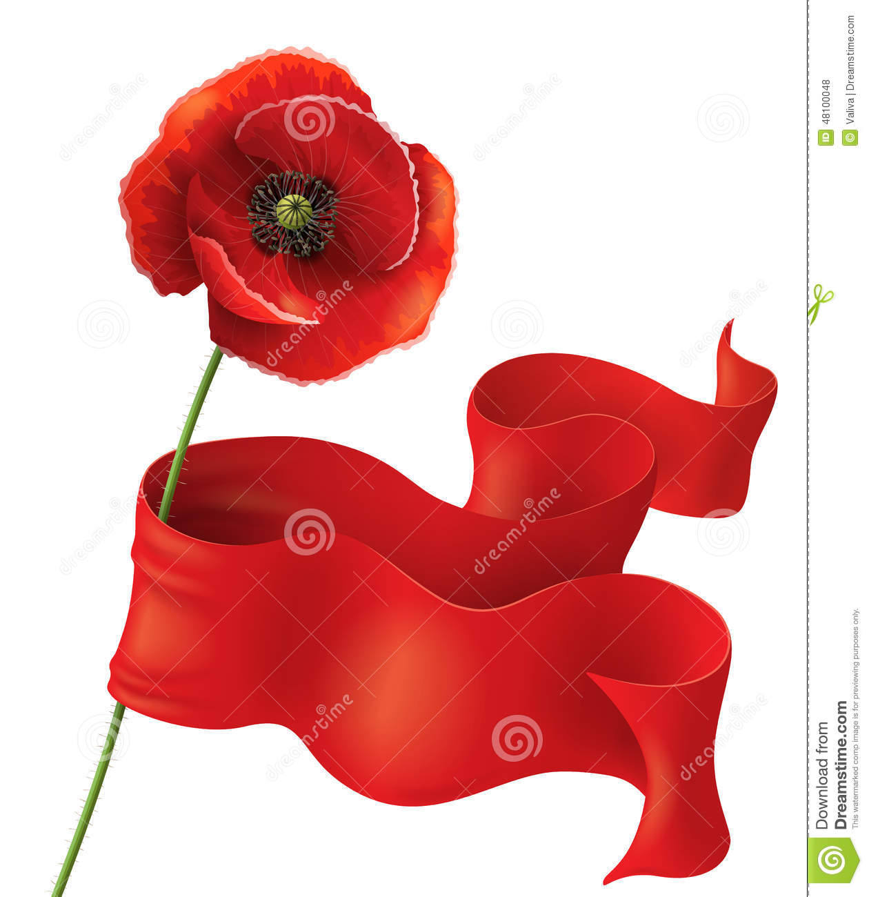 Poppy and red ribbon stock vector illustration of remember 48100048 poppy flower with red ribbon on white remembrance day background mightylinksfo