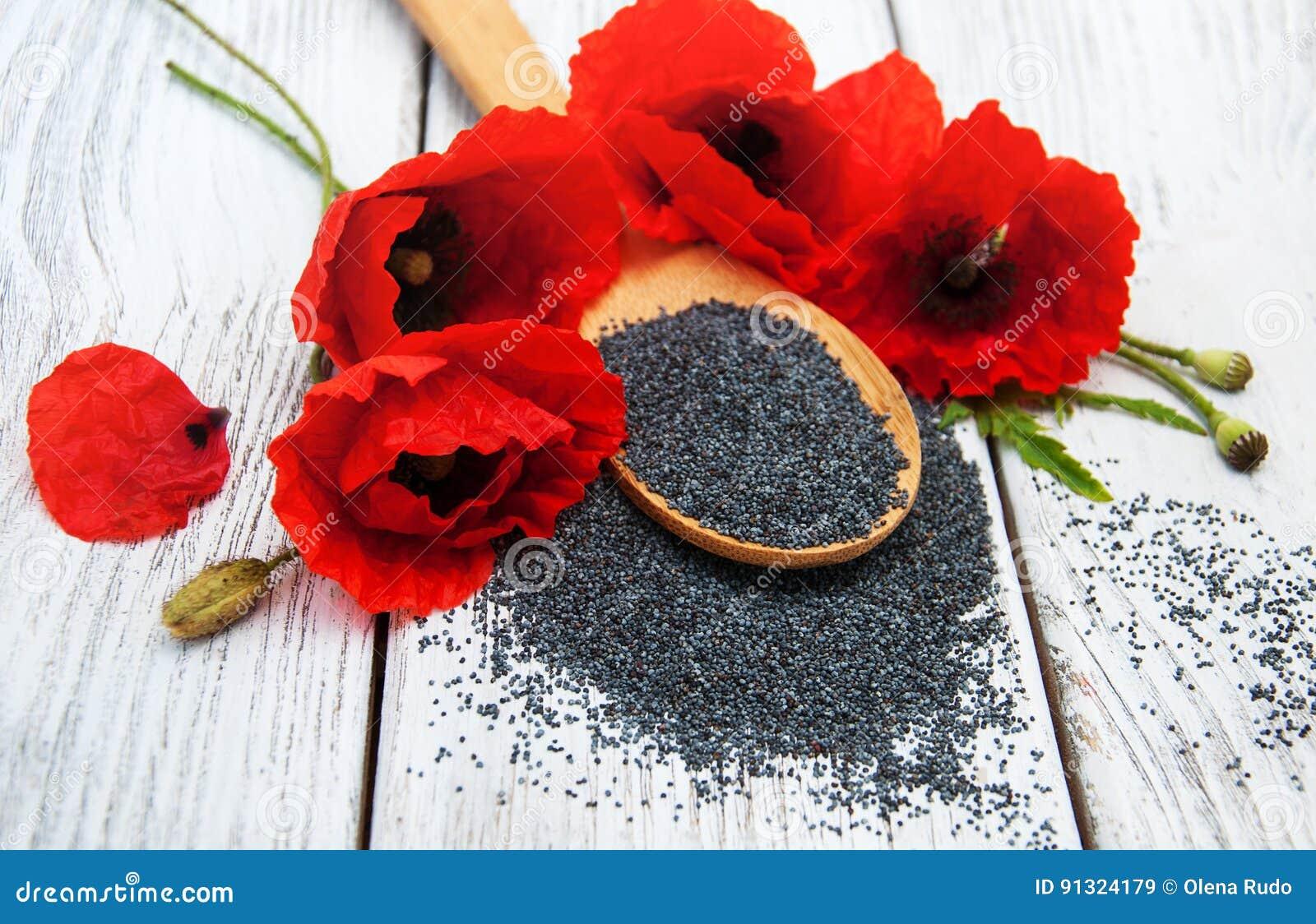 Poppy seeds and flowers stock image image of eating 91324179 download poppy seeds and flowers stock image image of eating 91324179 mightylinksfo
