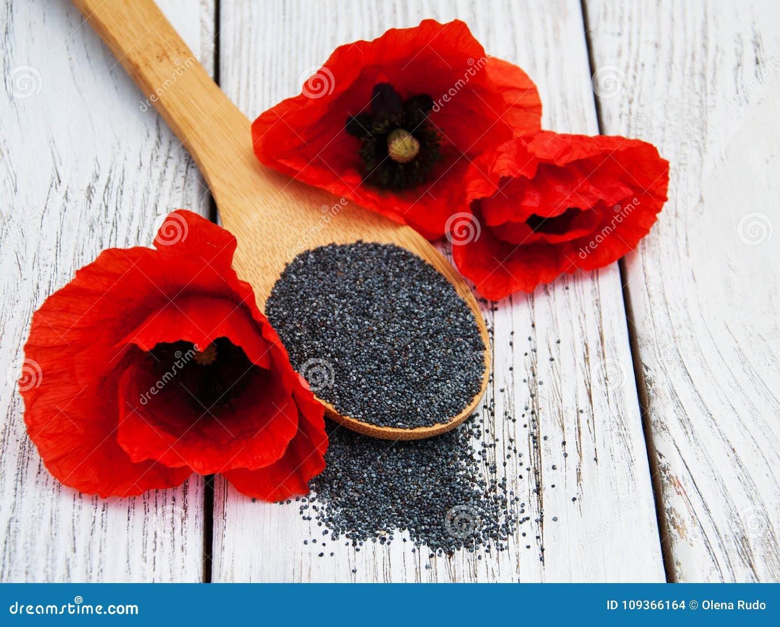 Poppy seeds and flowers stock photo image of eating 109366164 download poppy seeds and flowers stock photo image of eating 109366164 mightylinksfo