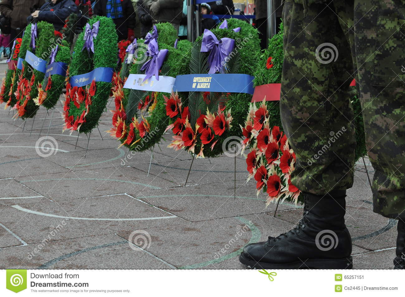 Poppy Wreaths at Foot of Canadian Soldier