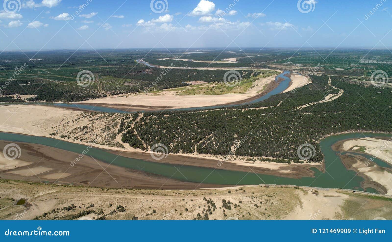 Populus euphratica Wald in der Tarim-Becken