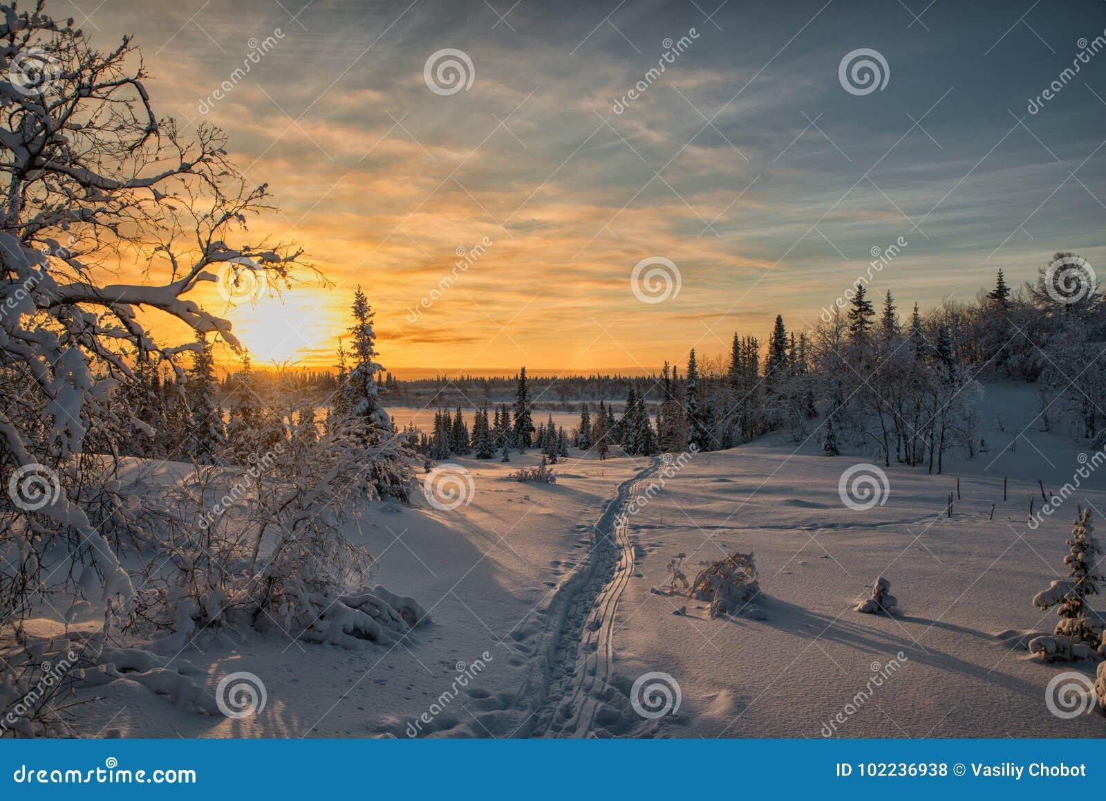 Por do sol ártico mágico do Natal