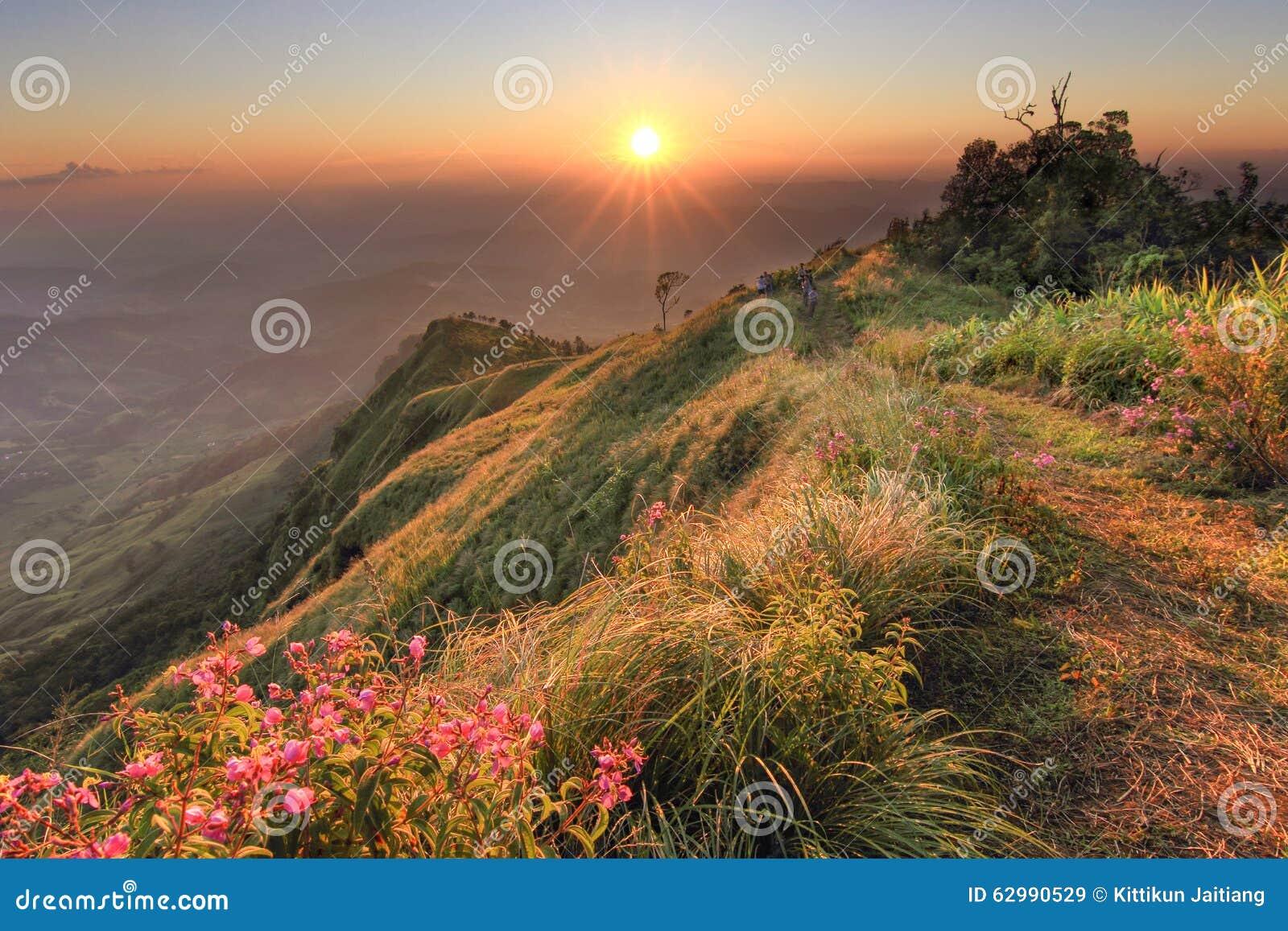 Por do sol bonito