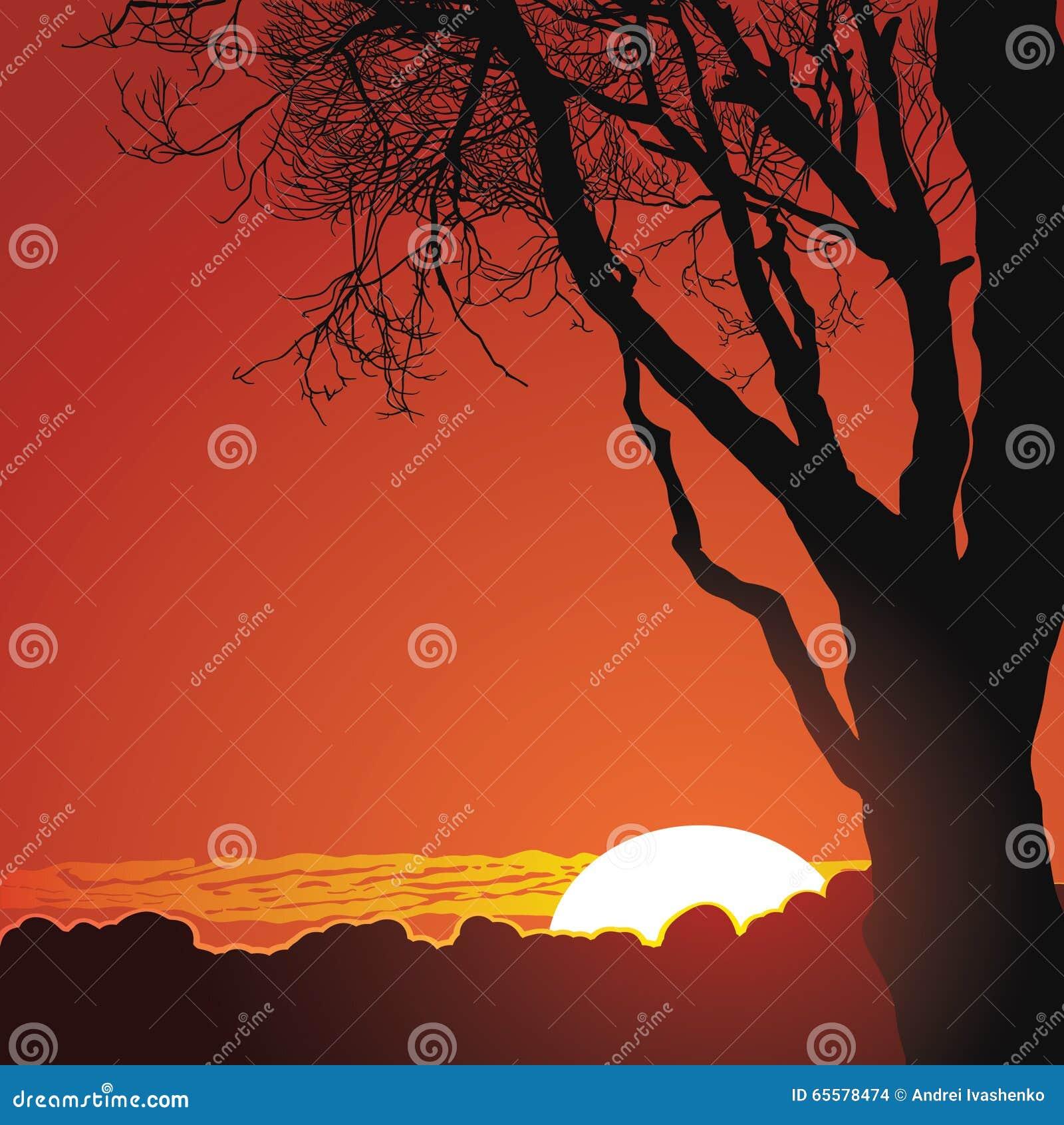 Por do sol bonito nas montanhas