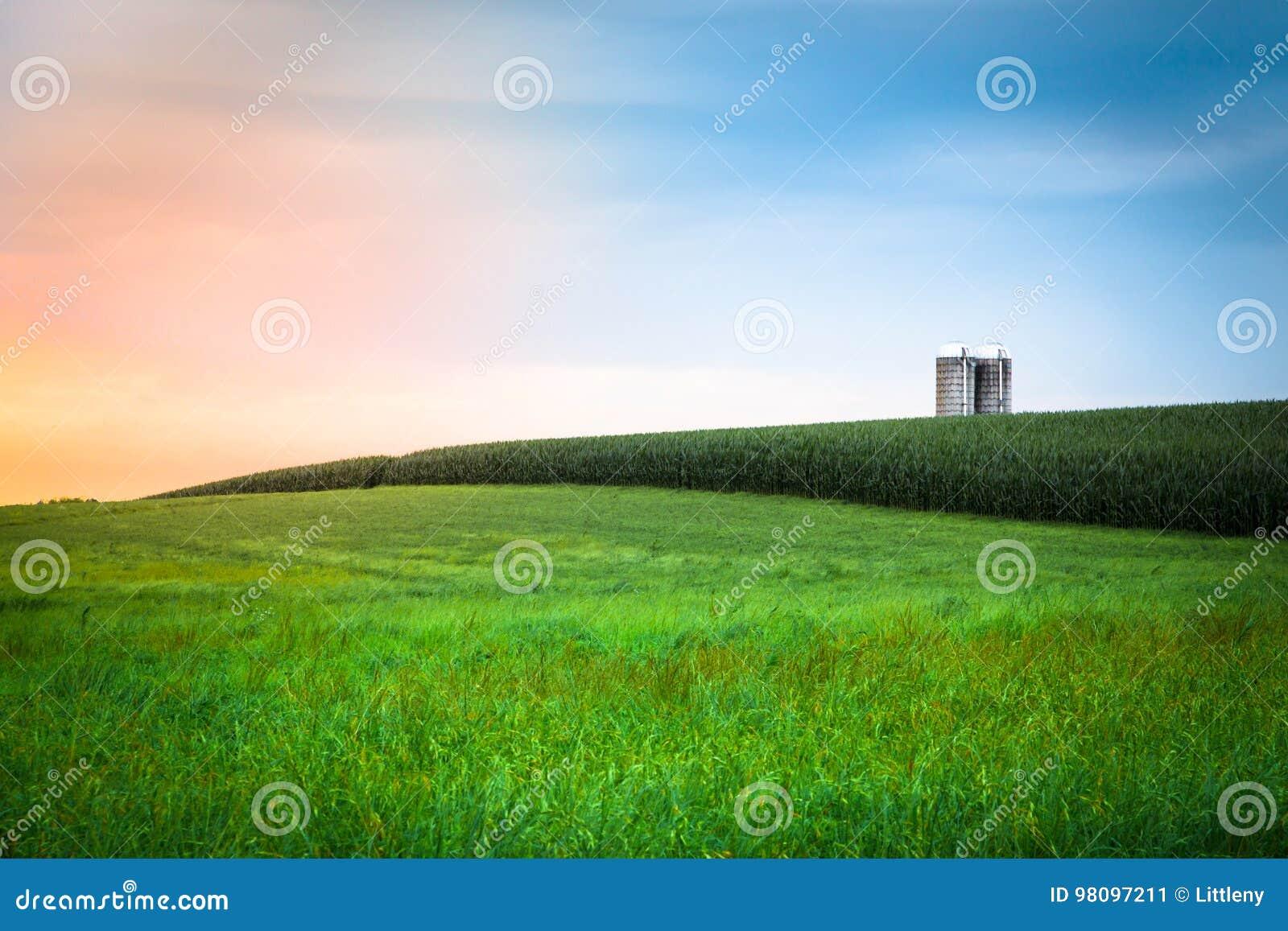 Por do sol da exploração agrícola de Amish