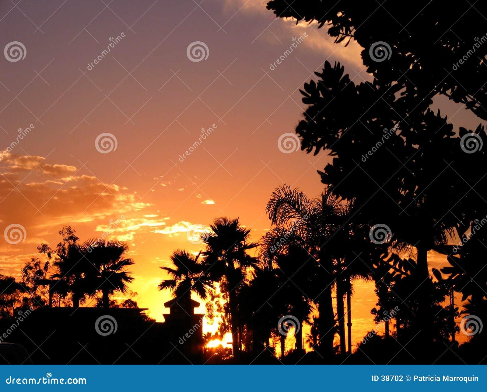 Por do sol de Califórnia