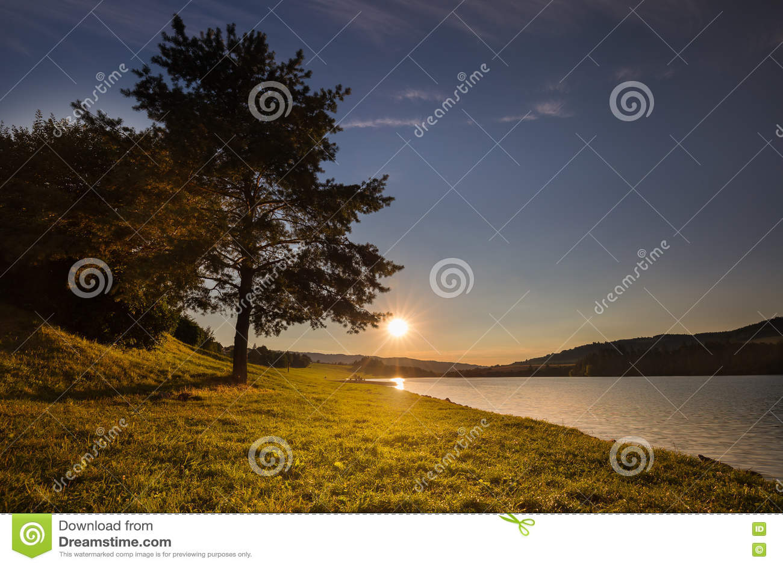 Por do sol e árvore pela costa da água