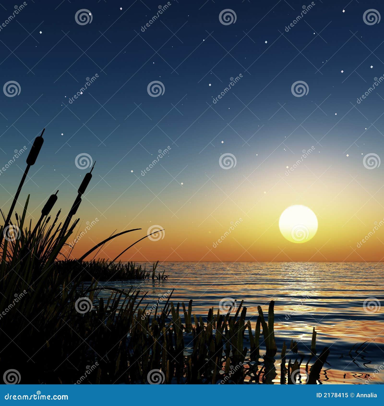 Por do sol estrelado
