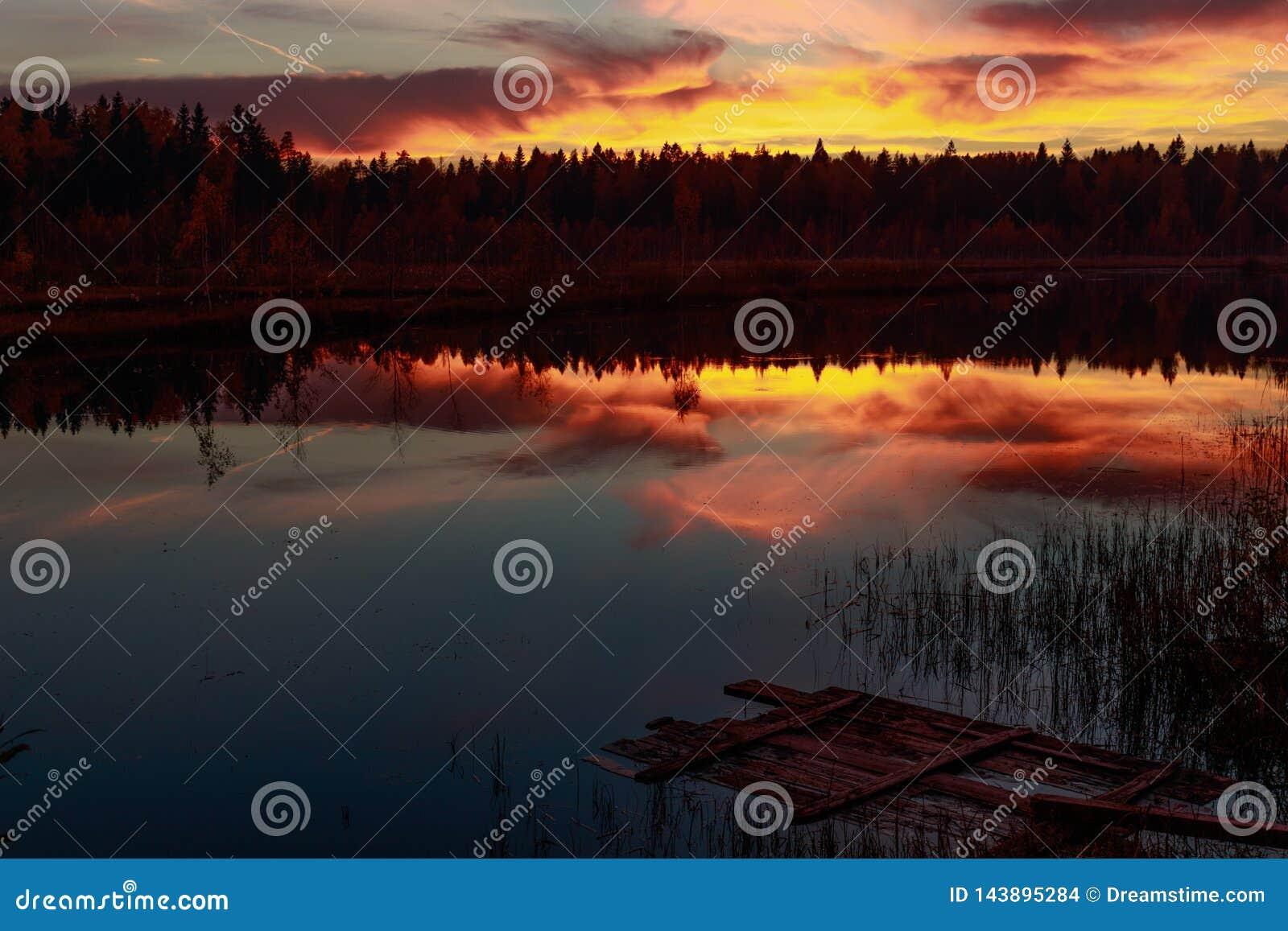 Por do sol do fogo no lago da floresta
