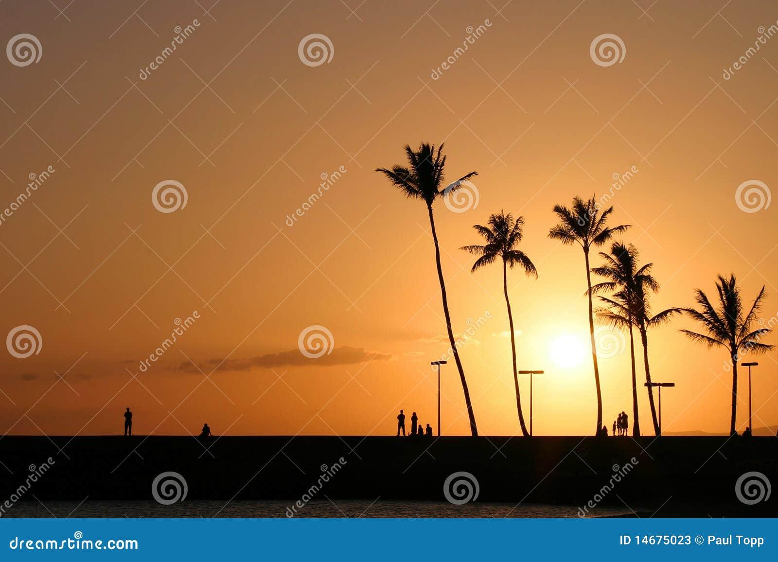 Por do sol havaiano tropical em Waikiki