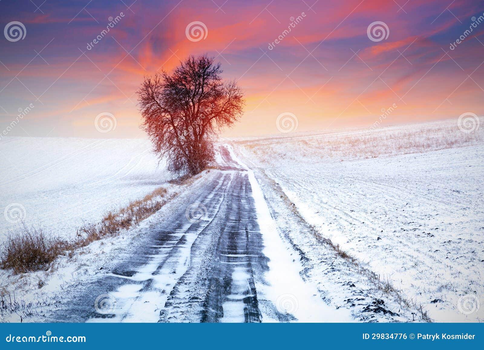 Por do sol idílico sobre o prado do inverno
