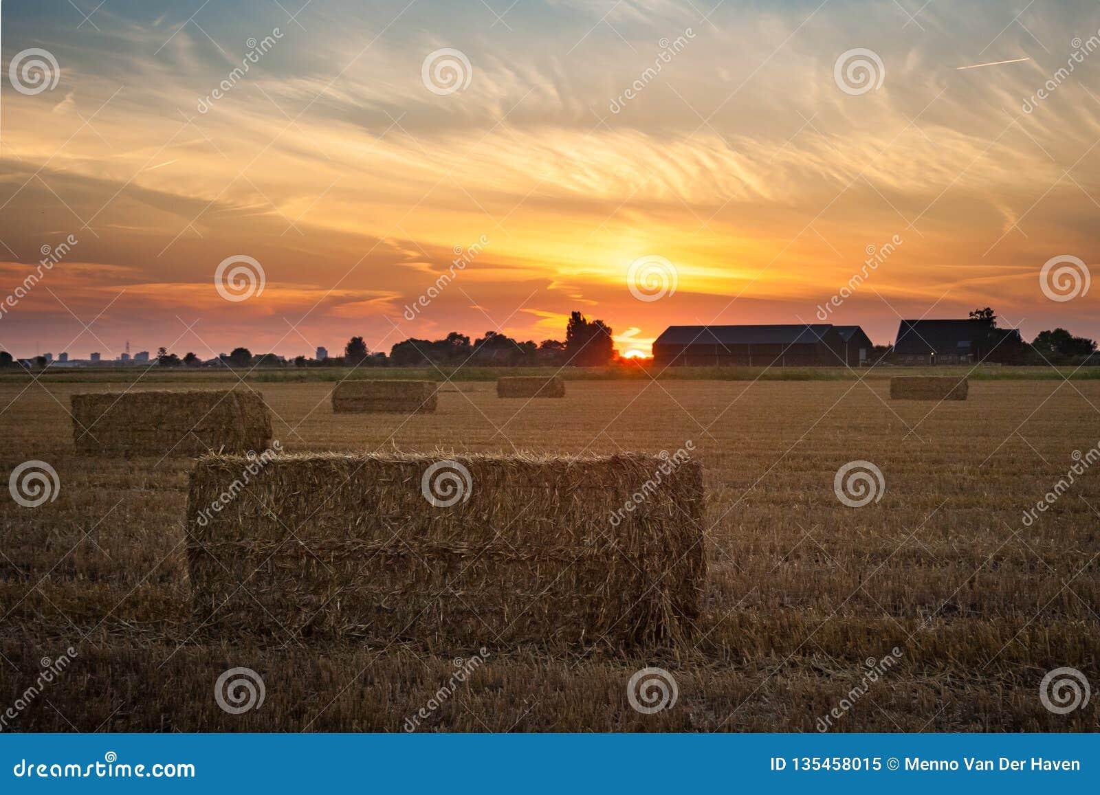 Por do sol sobre o campo holandês com pacotes de feno