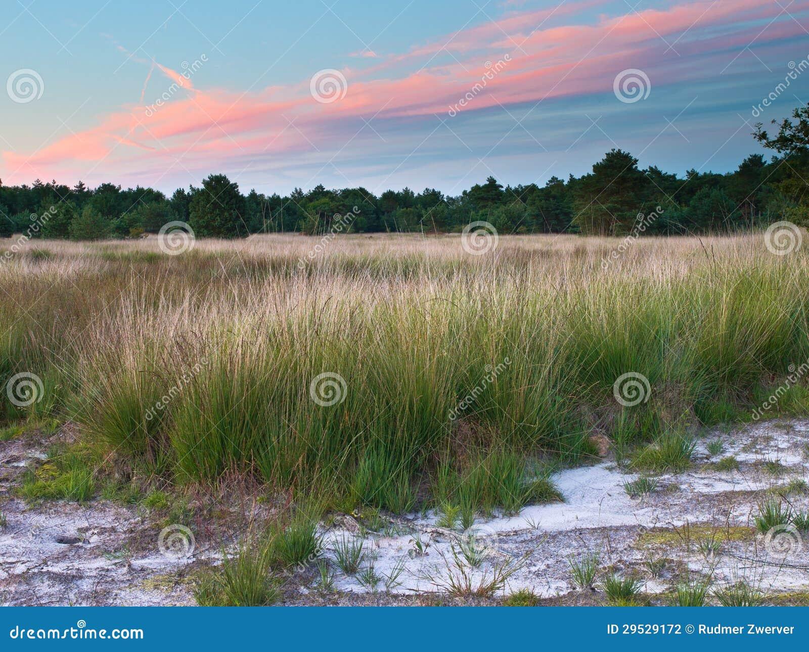 Por do sol sobre a reserva natural holandesa