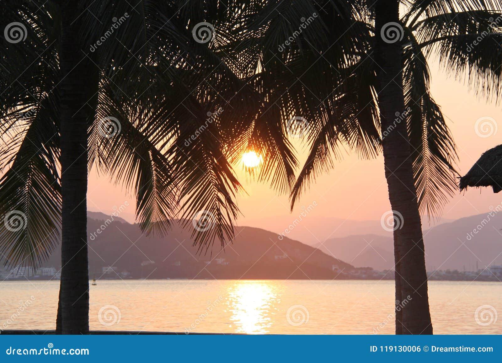 Por do sol surpreendente sobre o mar cercado por palmeiras