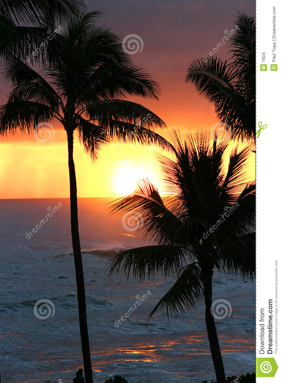 Por do sol tropical