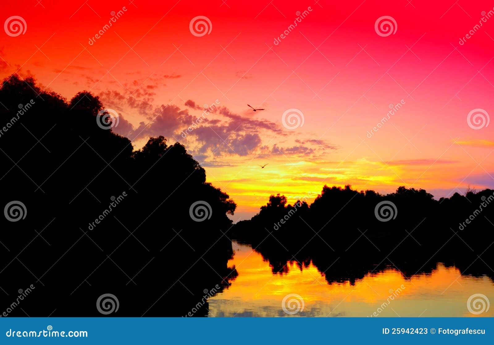 Por do sol vívido do delta de Danúbio