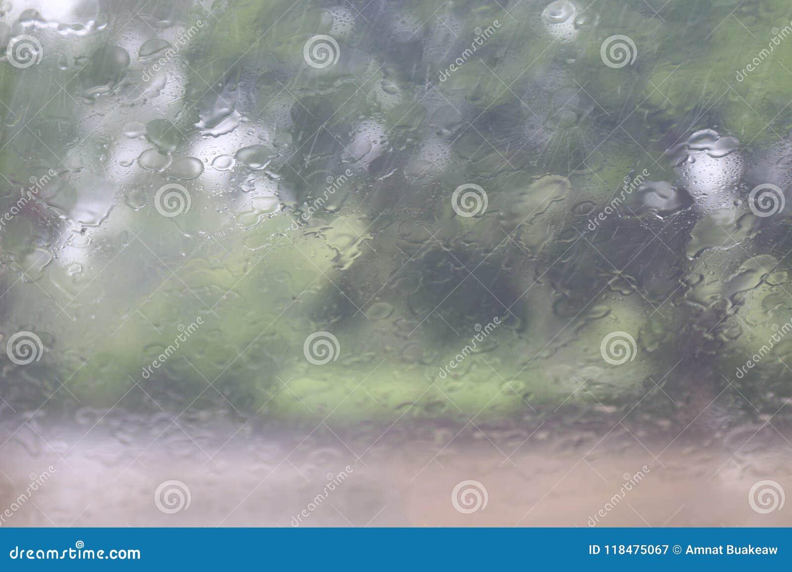 Pora deszczowa, pluśnięcie Podeszczowych kropelek Naturalna woda Opuszcza na Szklanym okno w pory deszczowa drzewnym tle, deszcz