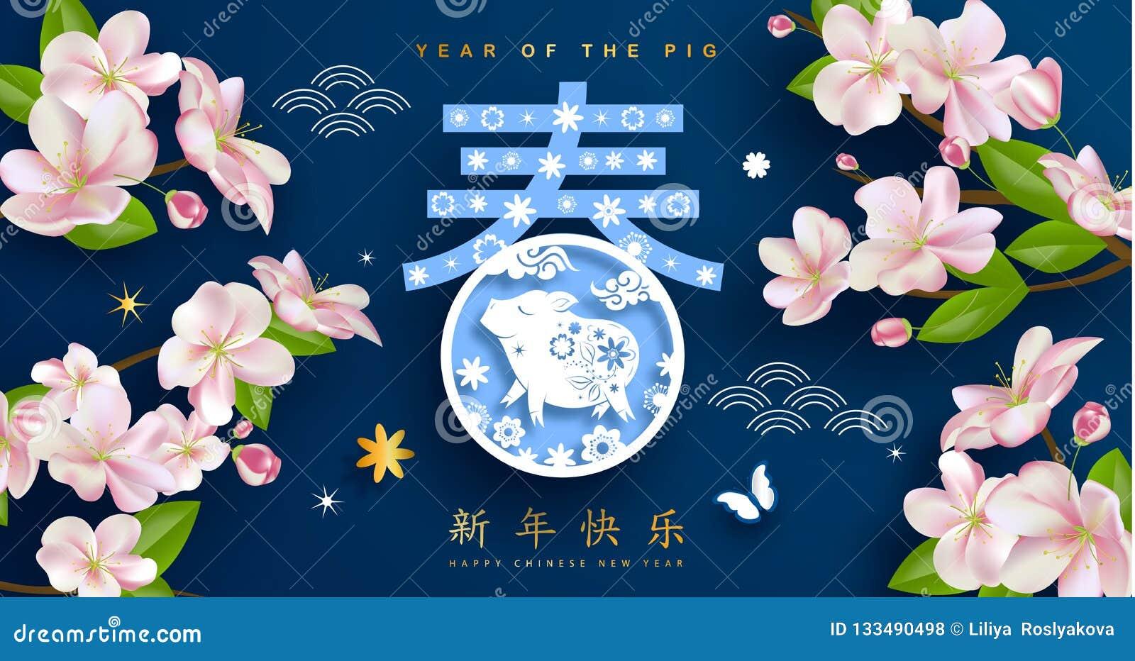 Porc chinois de zodiaque de nouvelle année et carte de voeux de fleur de festival de printemps Fond pour des insectes, invitation