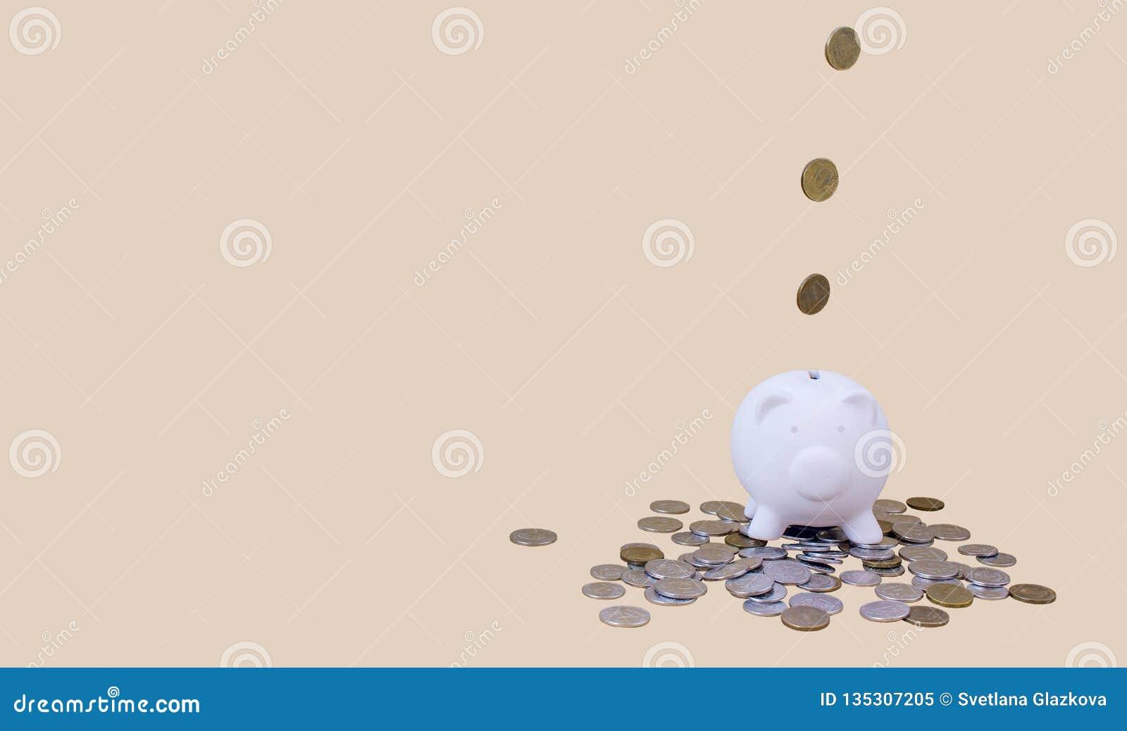 Porcellino salvadanaio con soldi e le monete