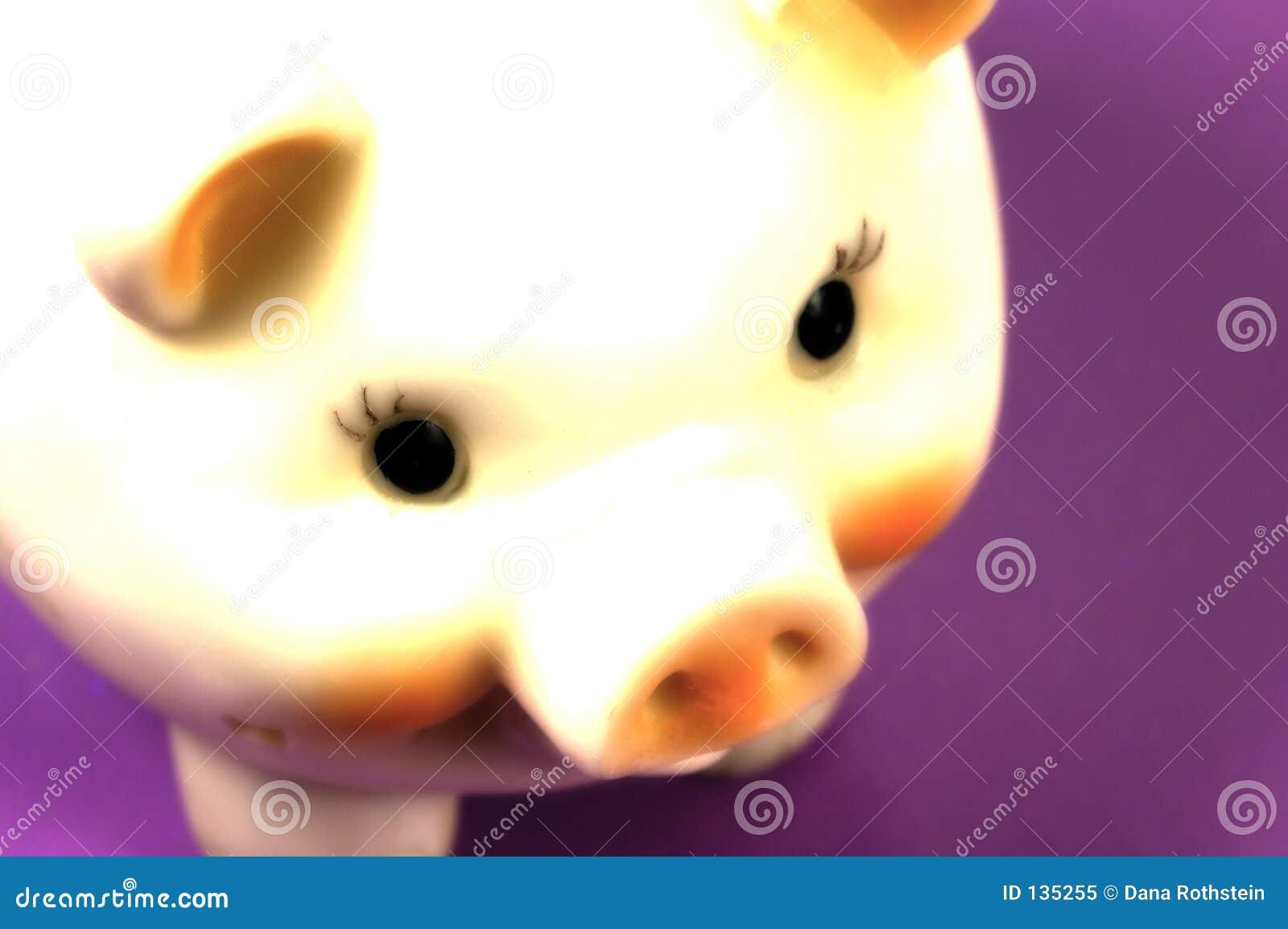 Porcin