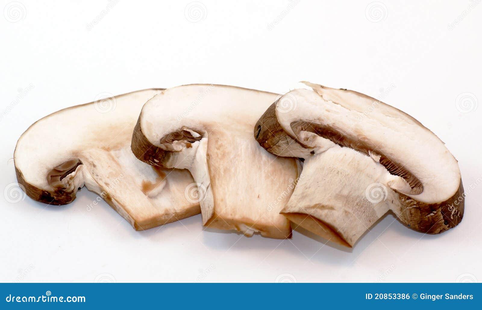 Porcini Mushroom Slices On White Background