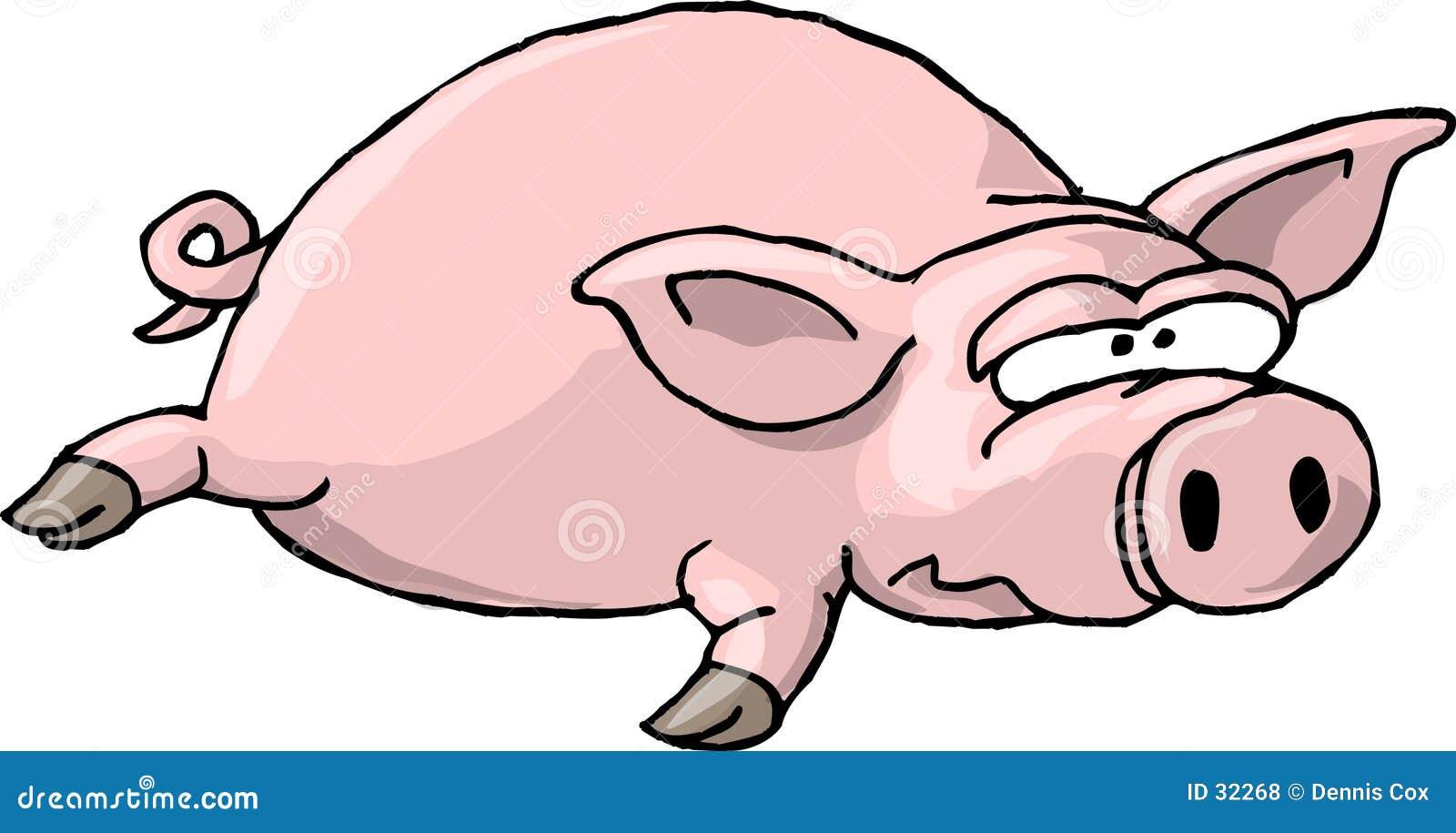 Porco liso II