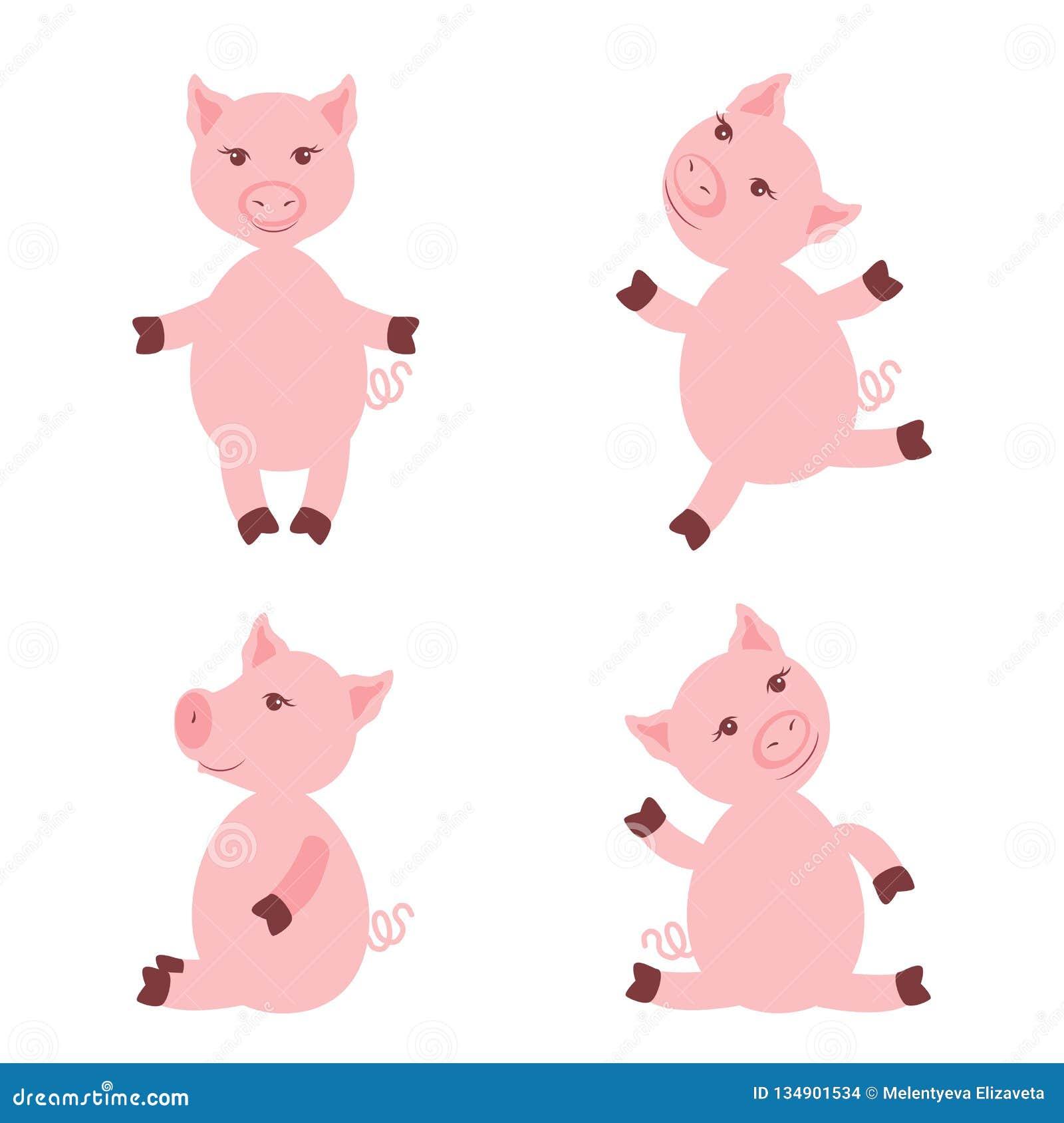 Porcos Cor De Rosa Bonitos Isolados No Fundo Branco Animais