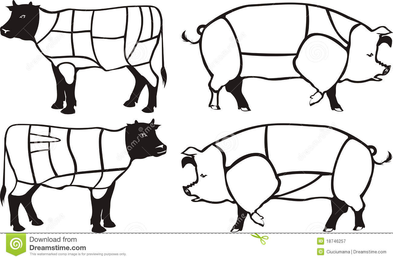 pork  u0026 beef diagrams royalty free stock photography