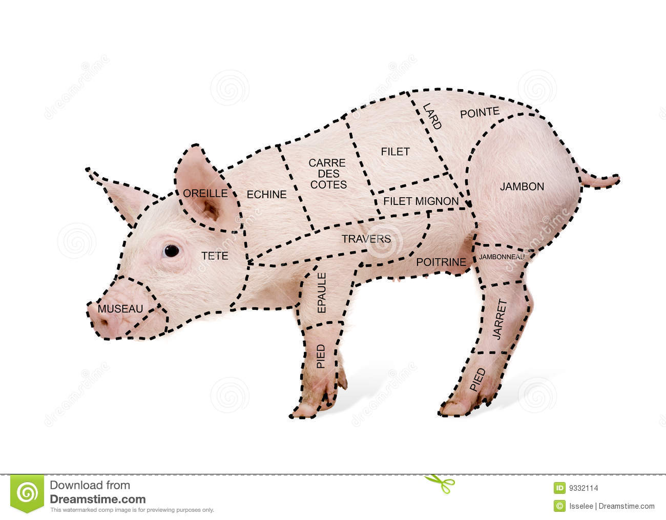 Pork cut chart poster in french in front of a white background.