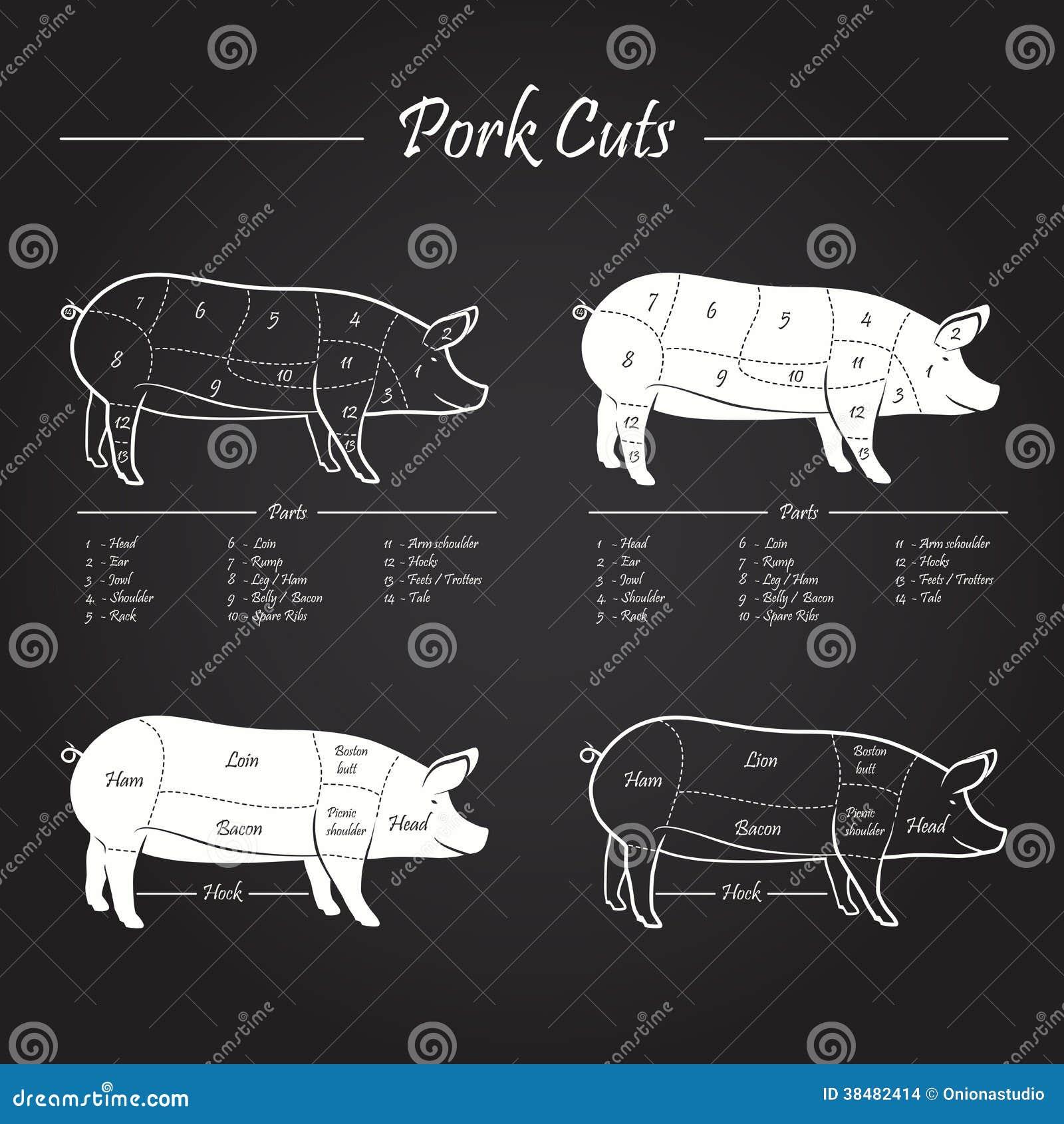 Pork Meat Cuts Scheme Stock Images