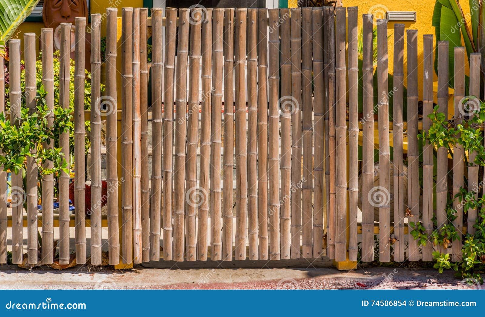 Porta de bambu
