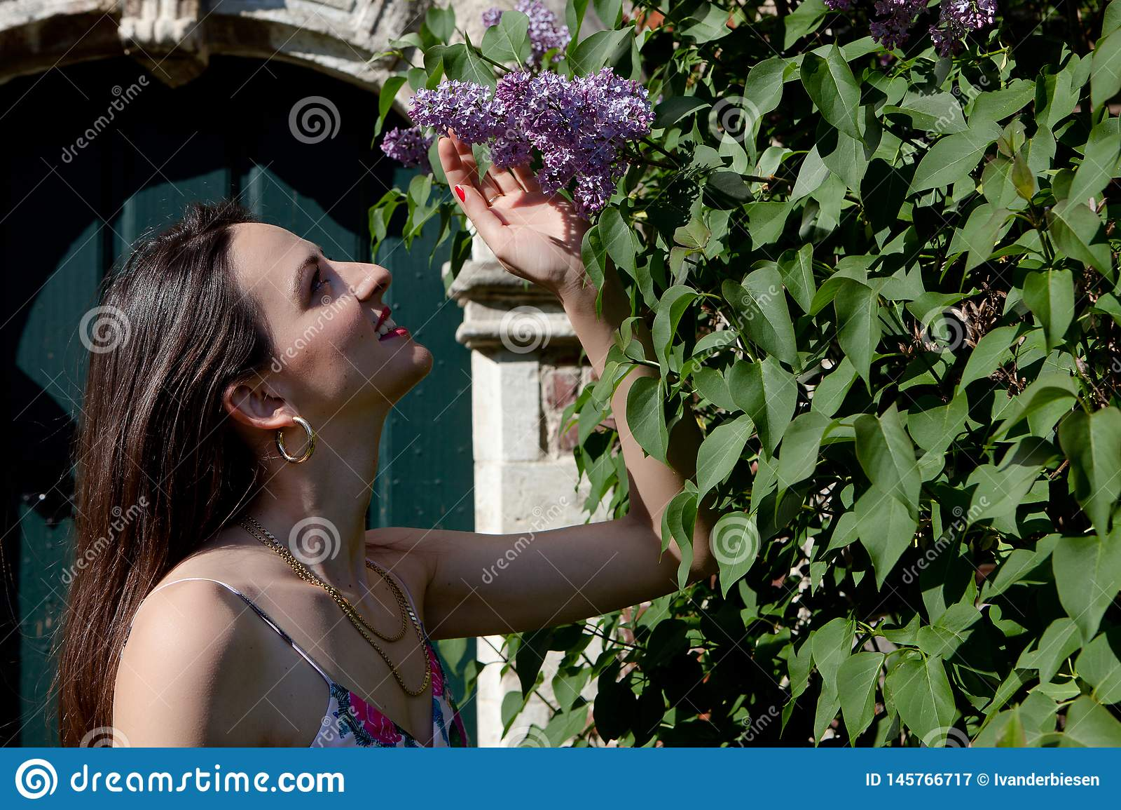 Porta lil?s da parede do syringa do sol da mulher, Groot Begijnhof, Lovaina, B?lgica