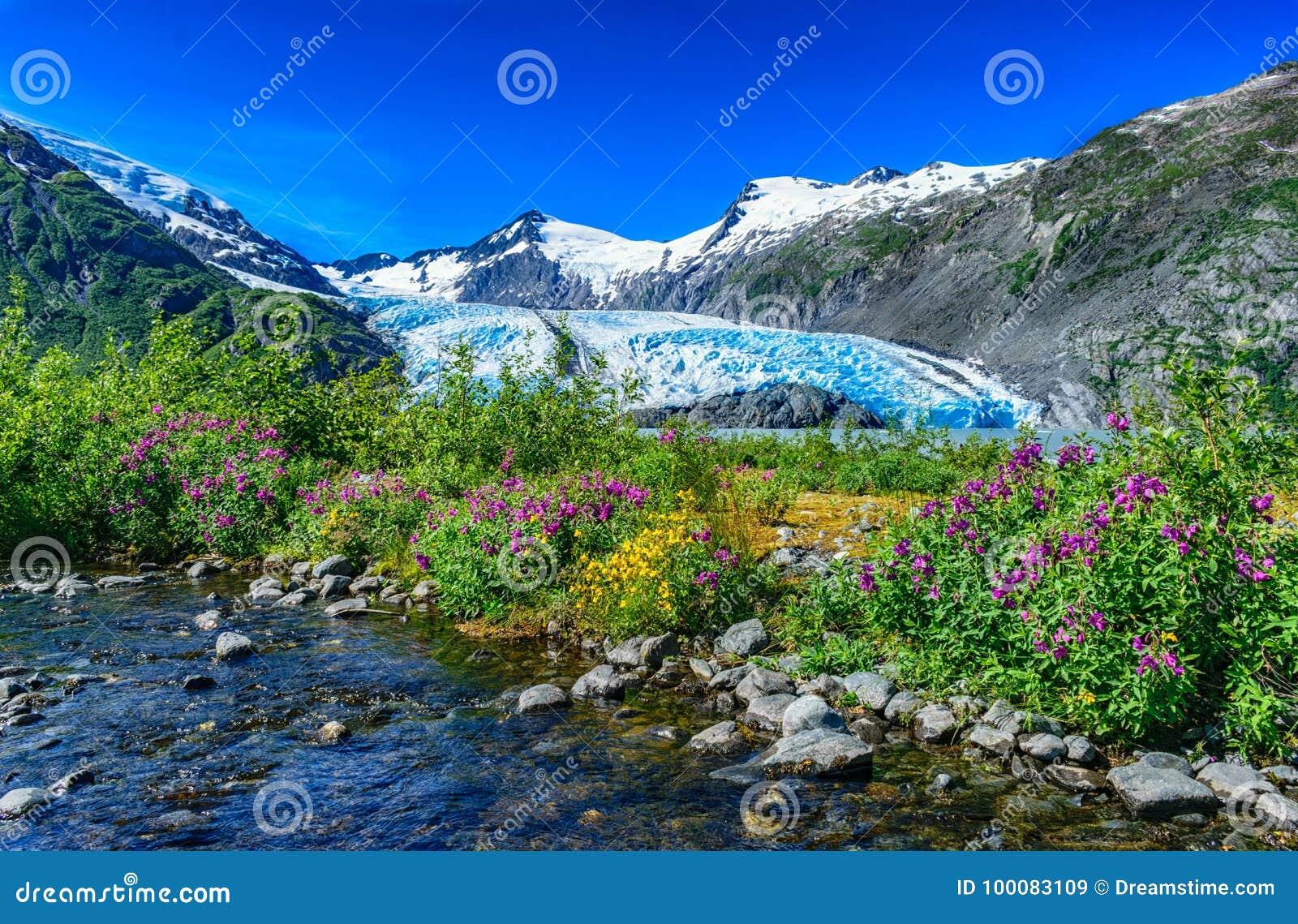 Portage冰川,阿拉斯加