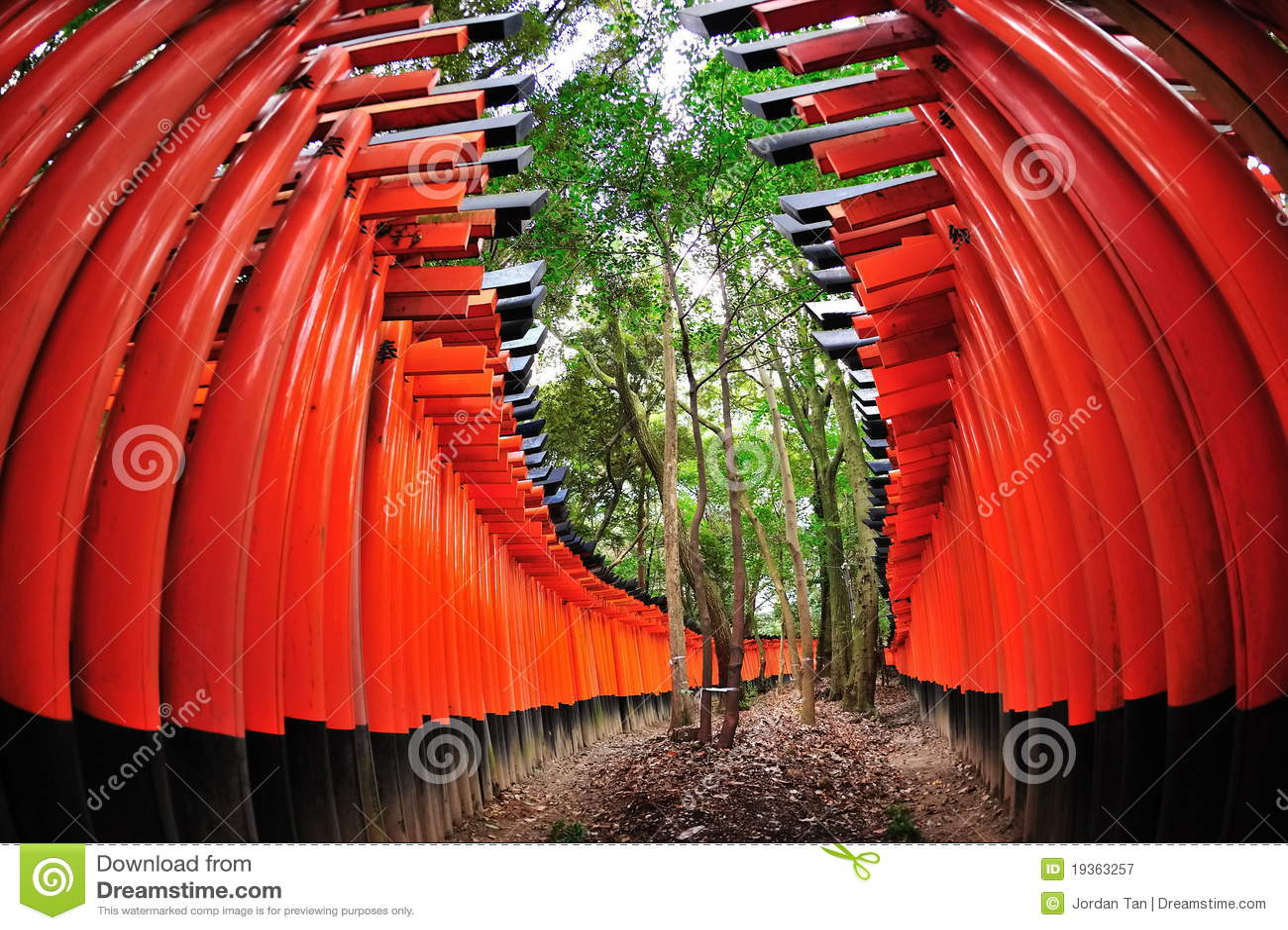 Portas de Torii do santuário de Fushimi Inari Taisha