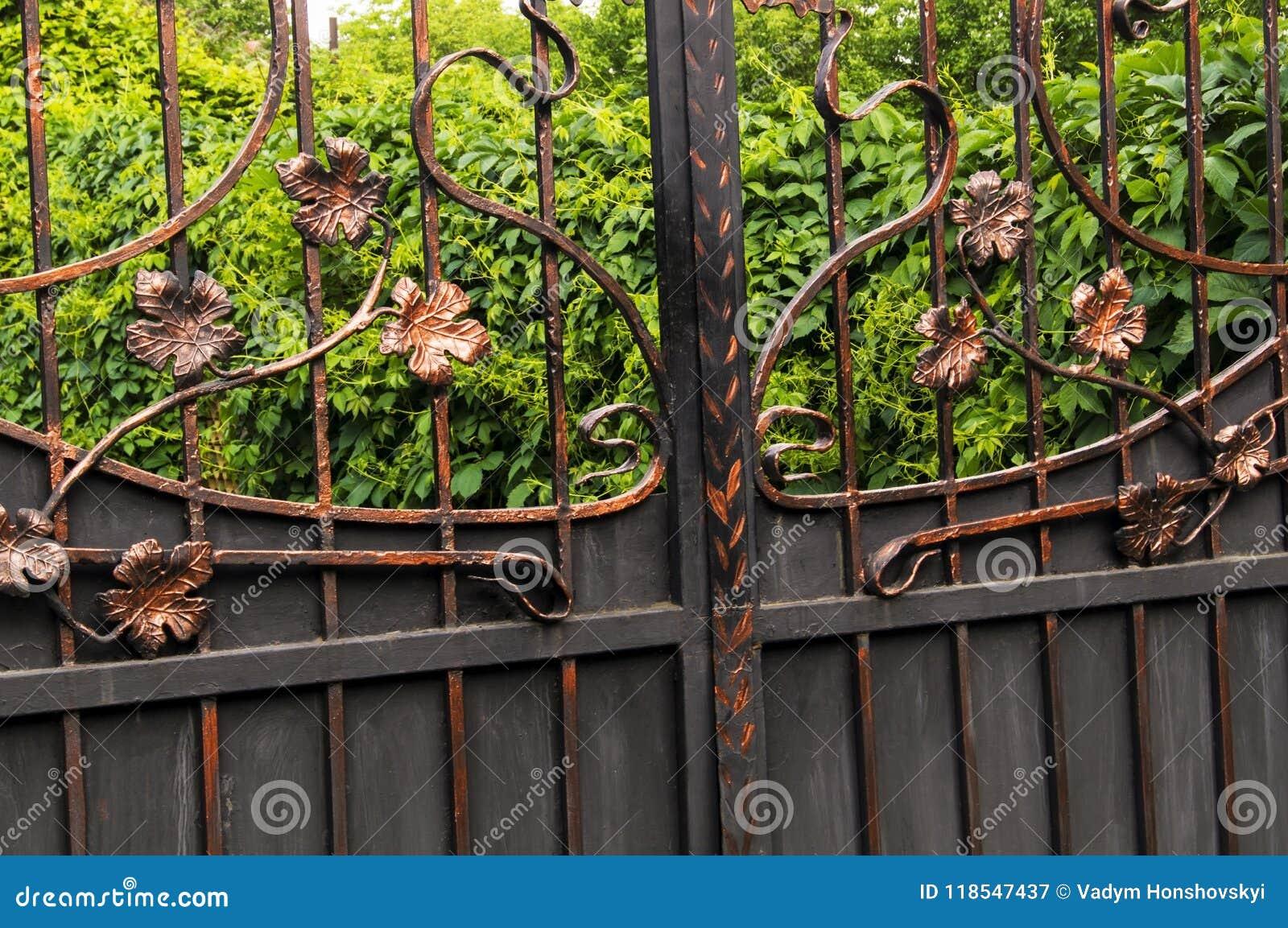 Portas do metal decoradas com elementos forjados