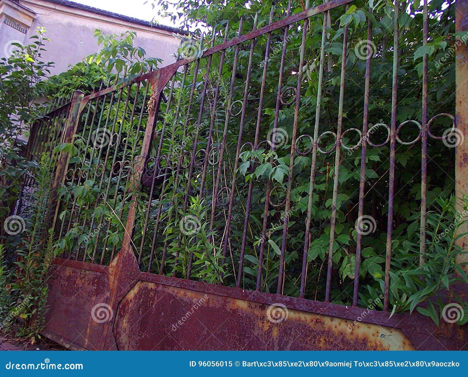 Porte abandonnée