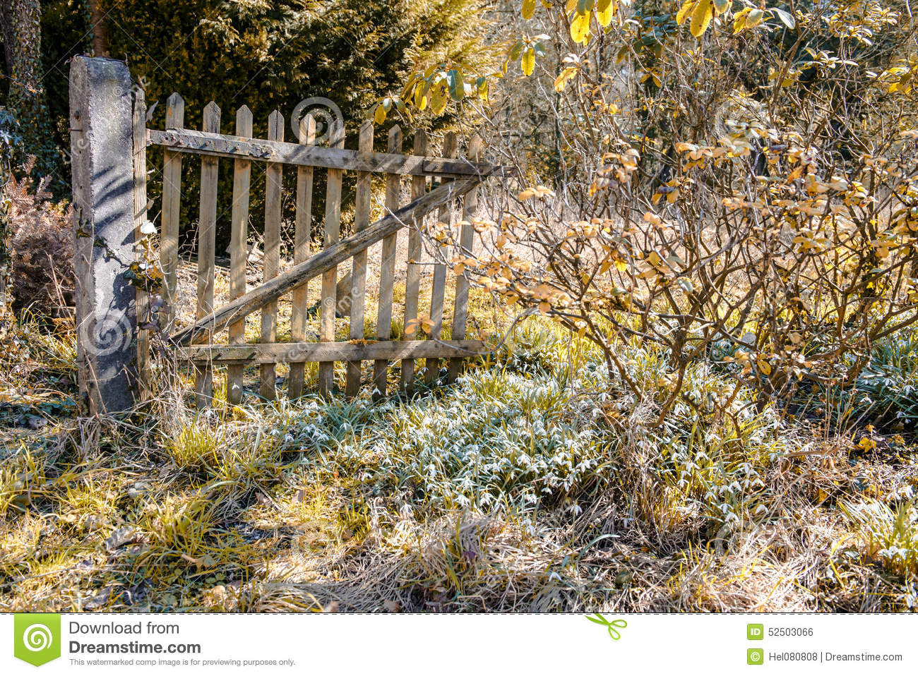 Porte au jardin abandonn photo stock image 52503066 for Au jardin