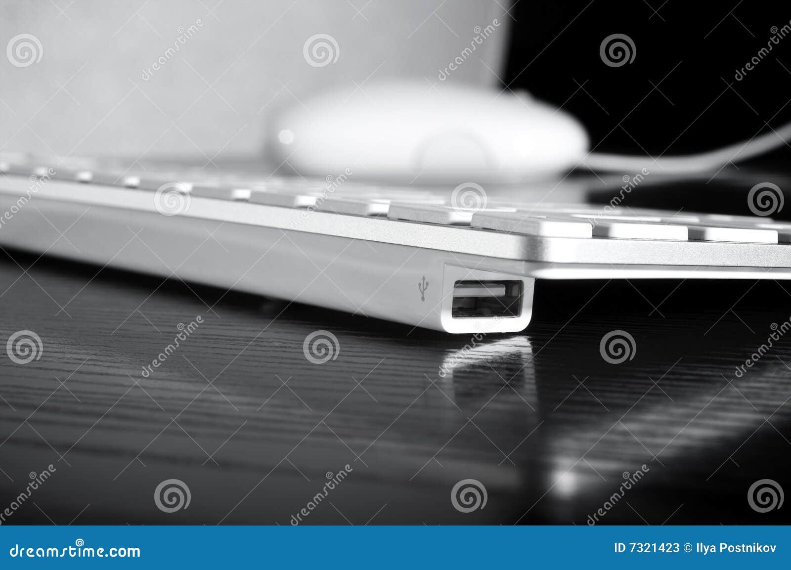 Porte del USB