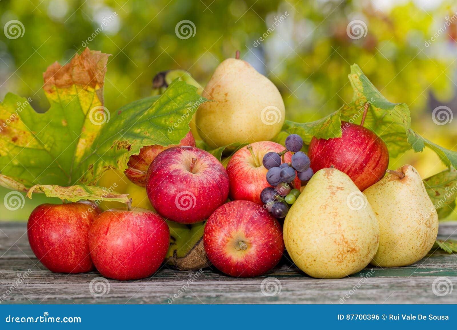 Porte des fruits extérieur