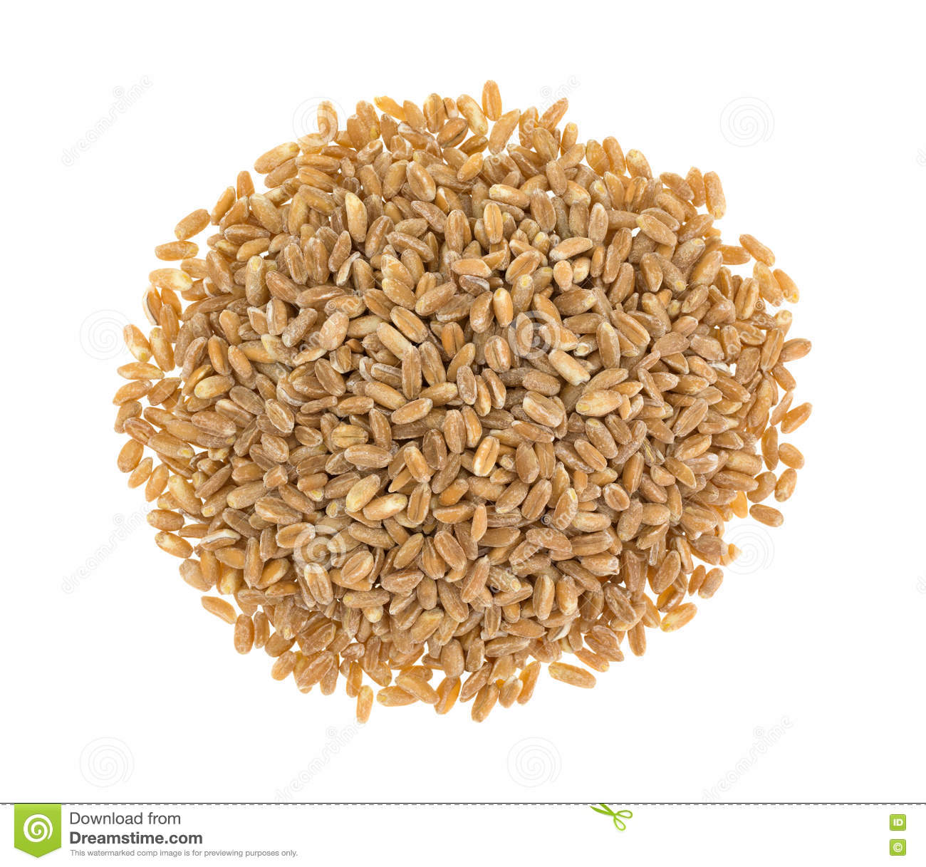 Portion Of Farro Organic Wheat On A White Background Stock Photo