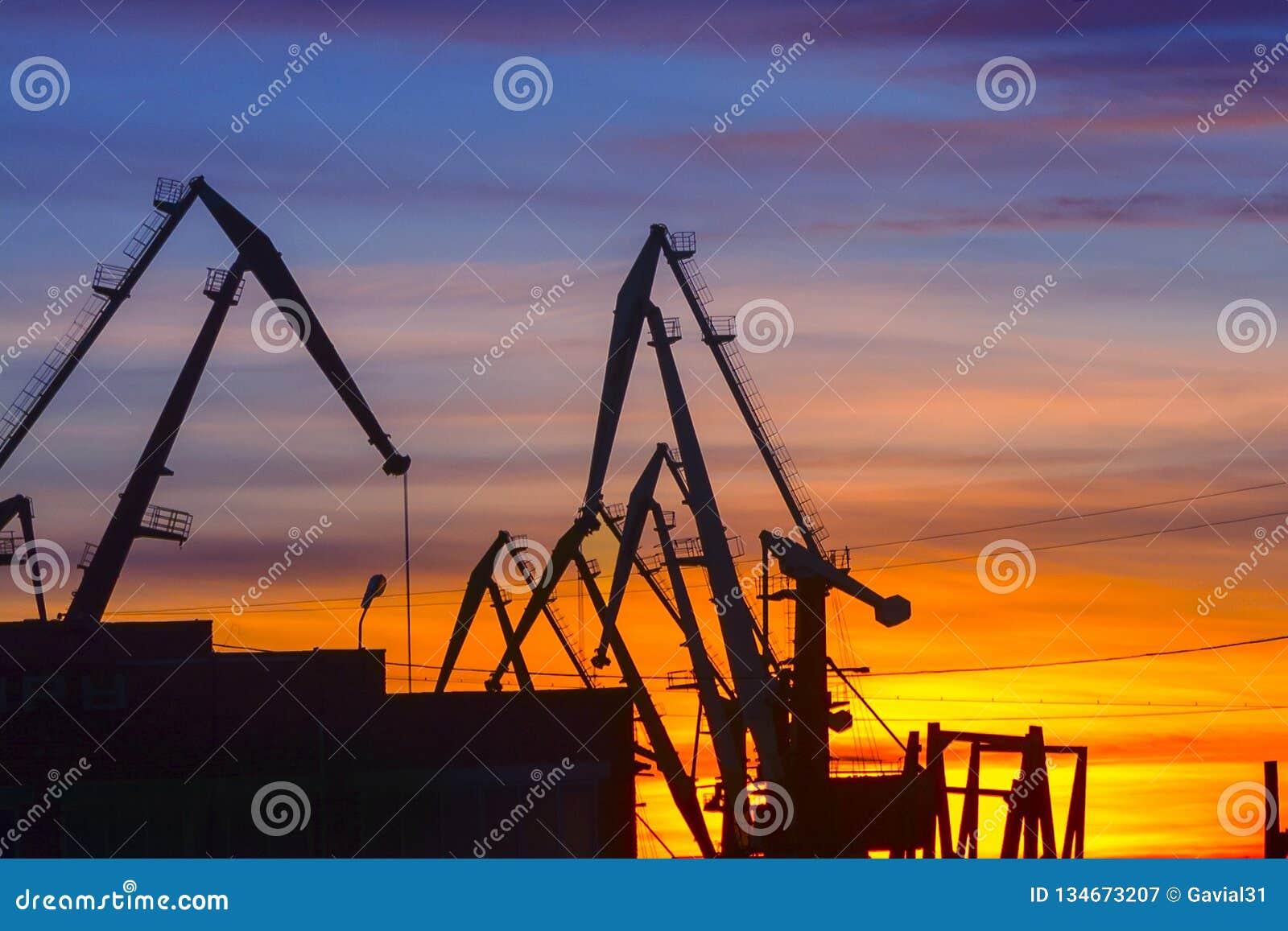 Portkräne auf dem Hintergrund des Sonnenuntergangs