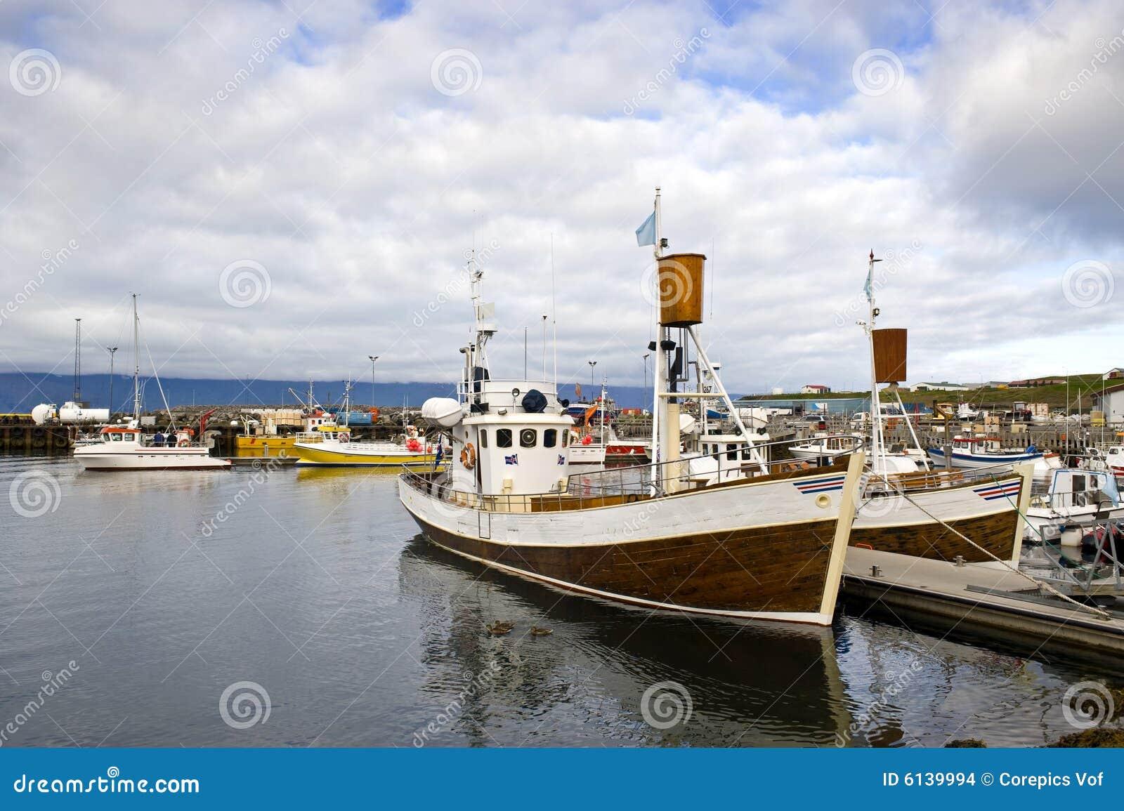 Porto di sorveglianza della balena artica