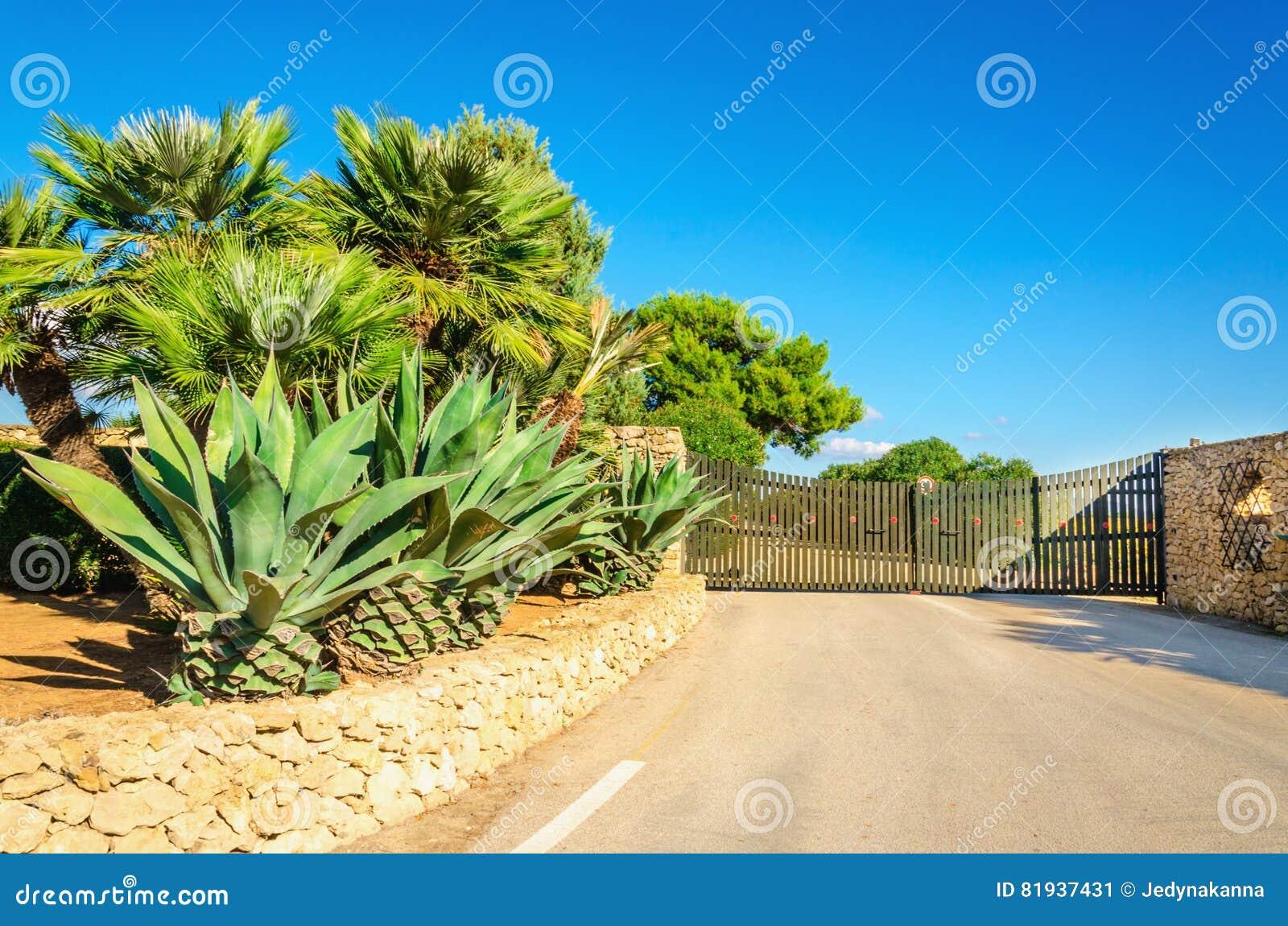 Portone al giardino con le belle piante esotiche sardegna for Piante belle da giardino