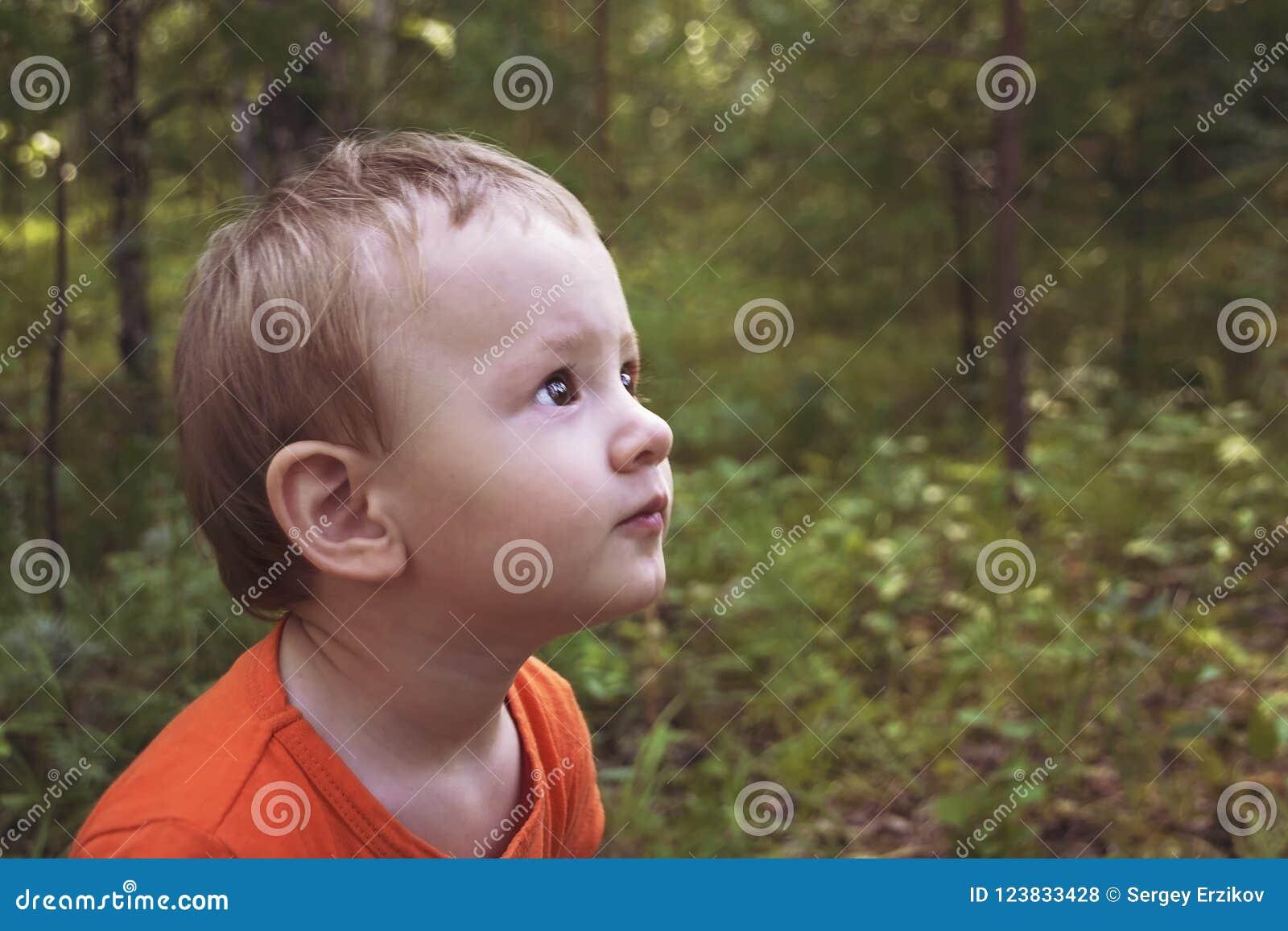 Porträt eines kleinen Kindes im Sommerwald