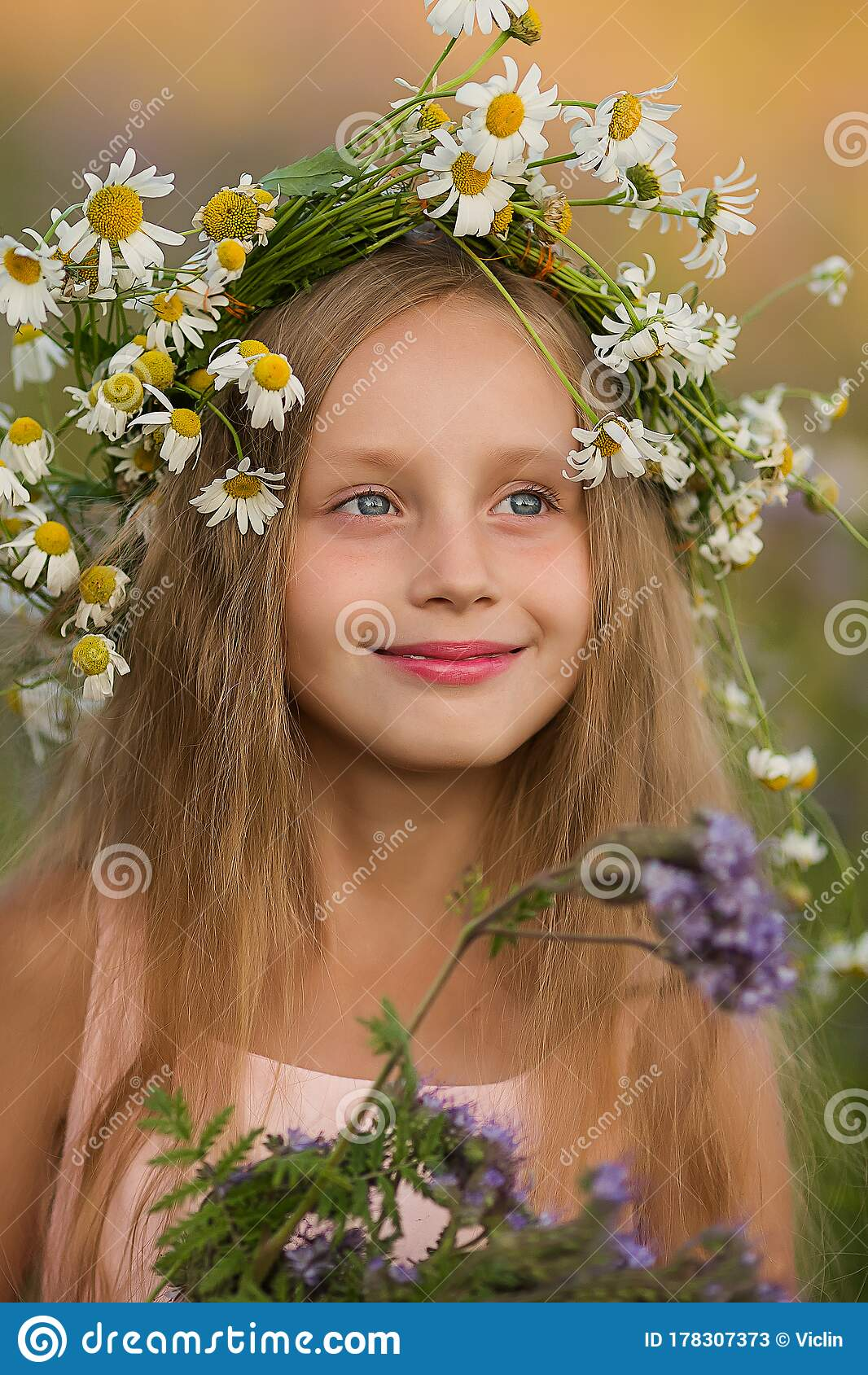 Portrait Of A Beautiful Girl Wearing A Crown Of Chamomile ...