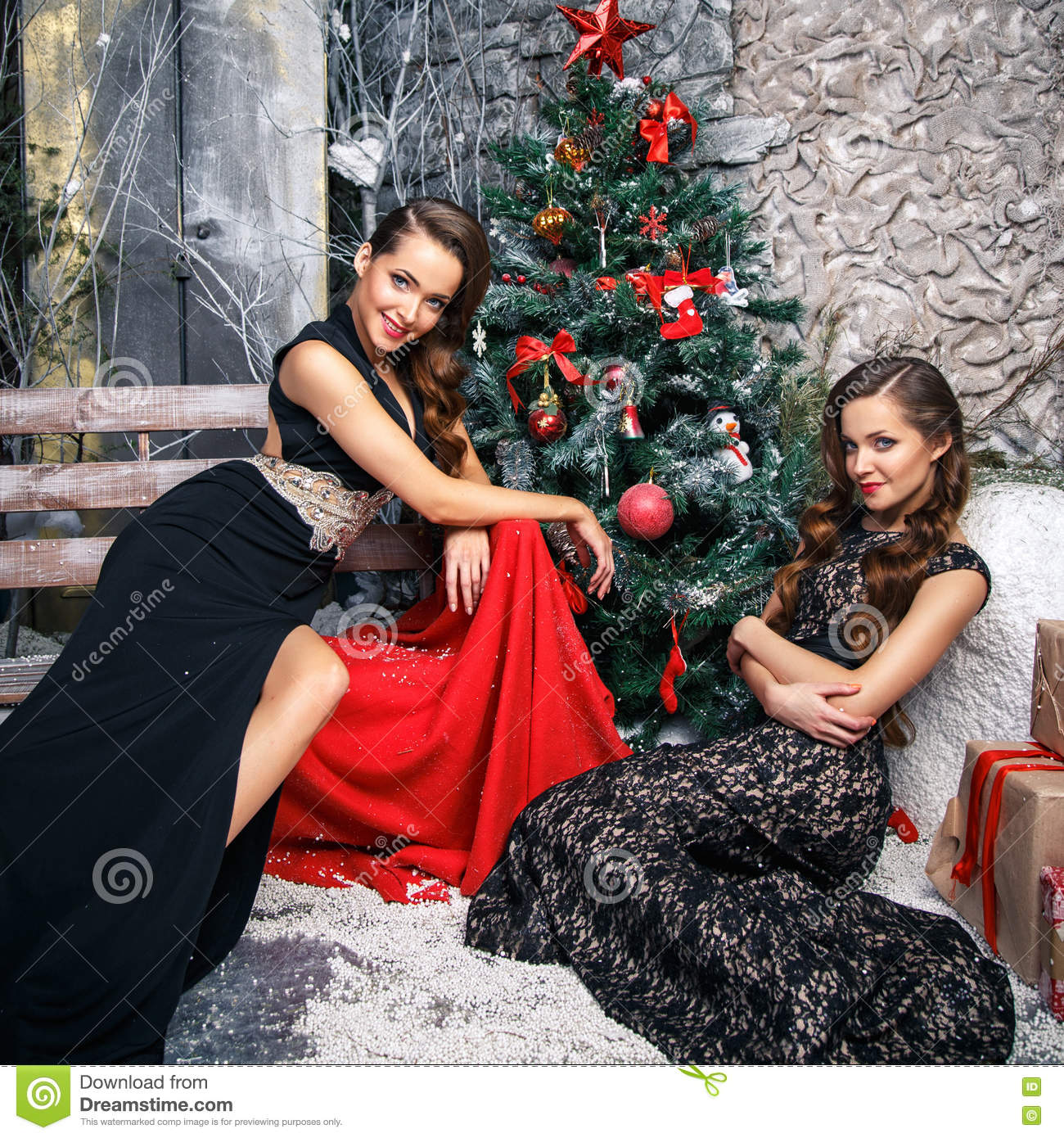 Christmas Evening Dresses.Portrait Of Beautiful Twins Young Women In Gorgeous Evening