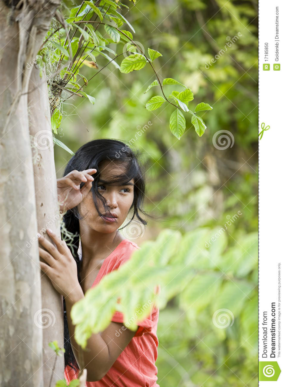 Portrait Of Beautiful Young Pacific Islander Woman Stock