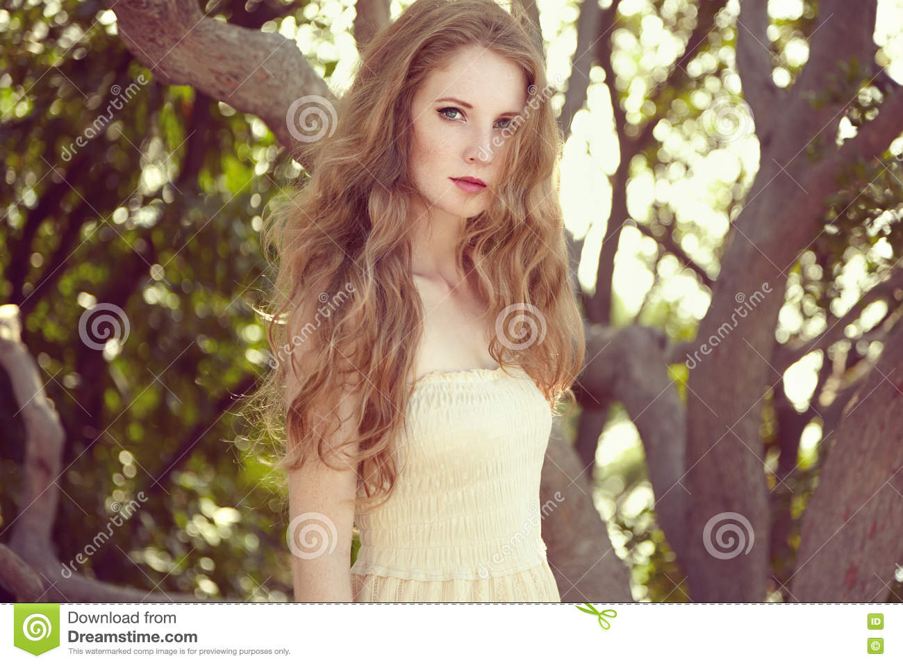 Portrait Of A Beautiful Young Woman In Summer Garden Stock Image ...