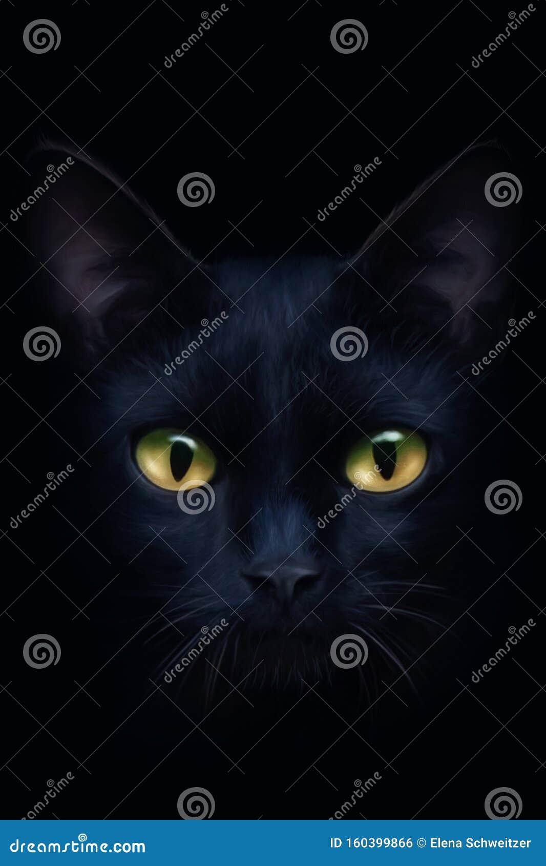 Portrait of a black cat